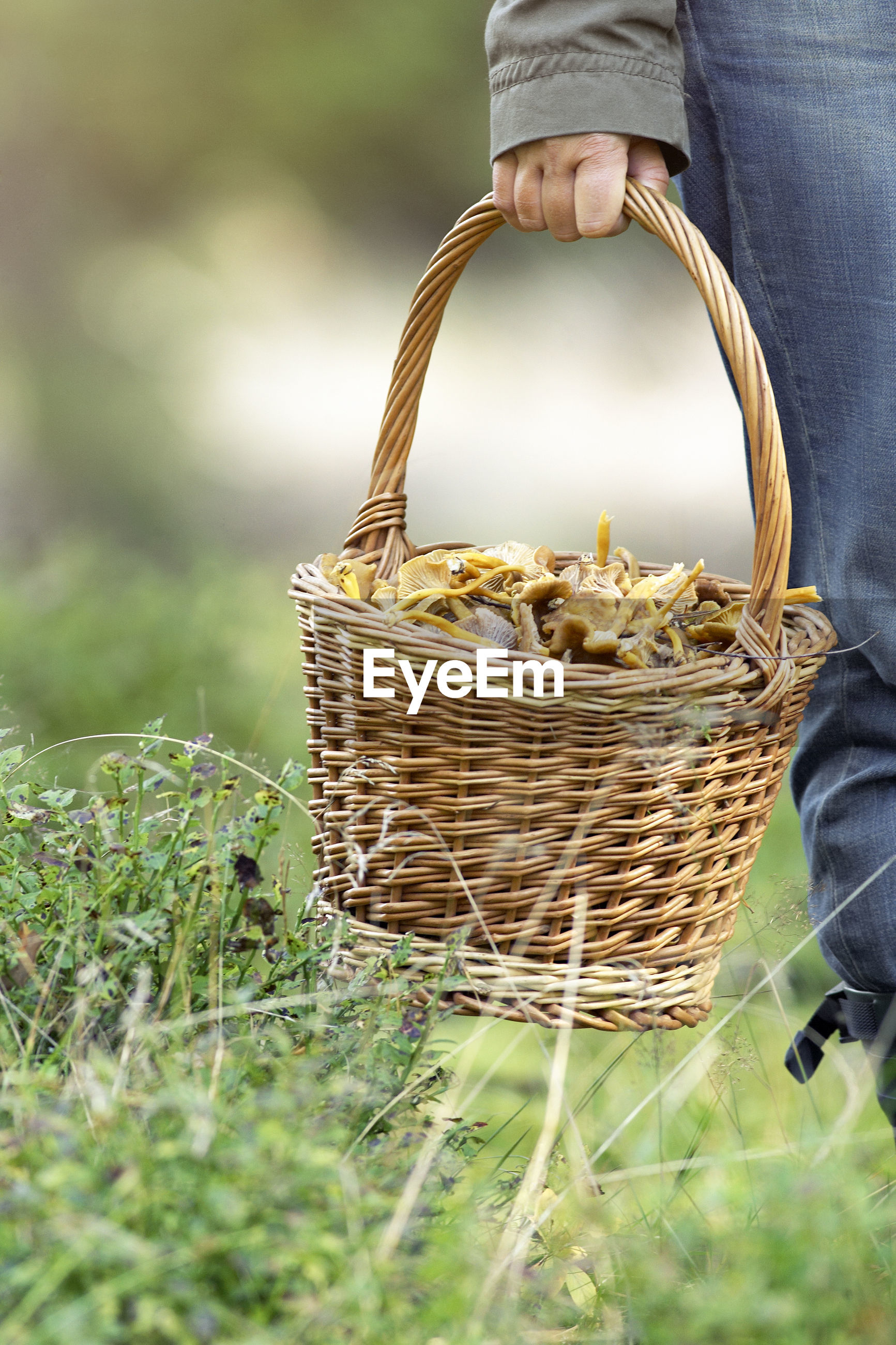 PERSON HOLDING BASKET IN FIELD
