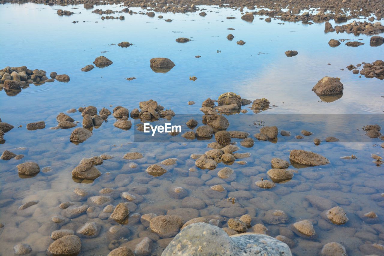 water, rock, solid, no people, nature, rock - object, high angle view, day, beauty in nature, stone, stone - object, tranquility, lake, land, waterfront, beach, wet, shallow, pebble, clean