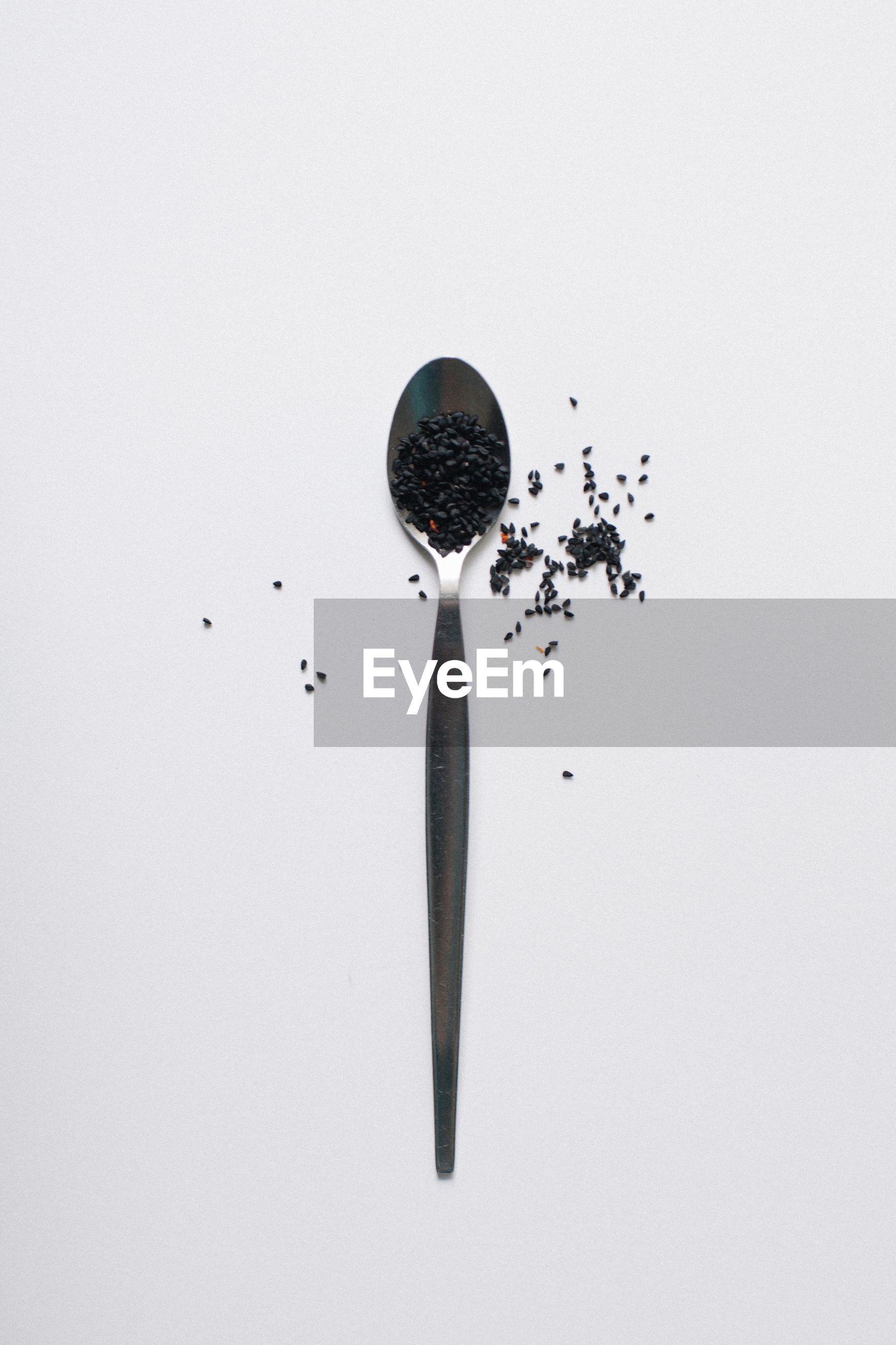 High angle view of seed in spoon against white background