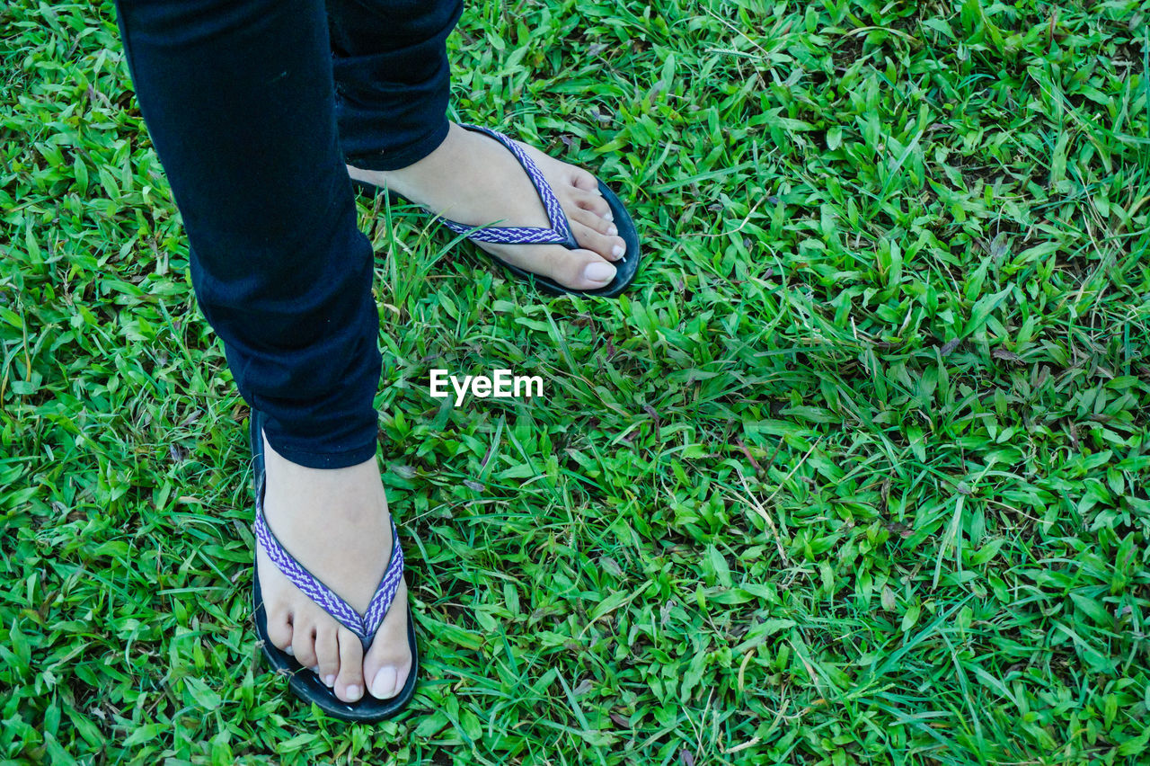 Low Section Of Woman Wearing Flip-Flop Standing On Grassy Field
