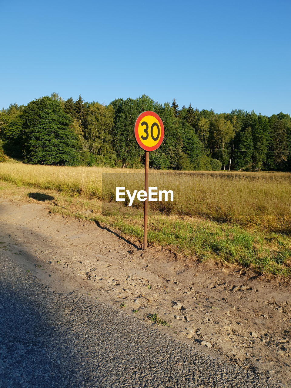 road, sign, plant, tree, road sign, communication, sky, transportation, nature, clear sky, day, guidance, no people, speed limit sign, field, direction, text, land, grass, warning sign, outdoors