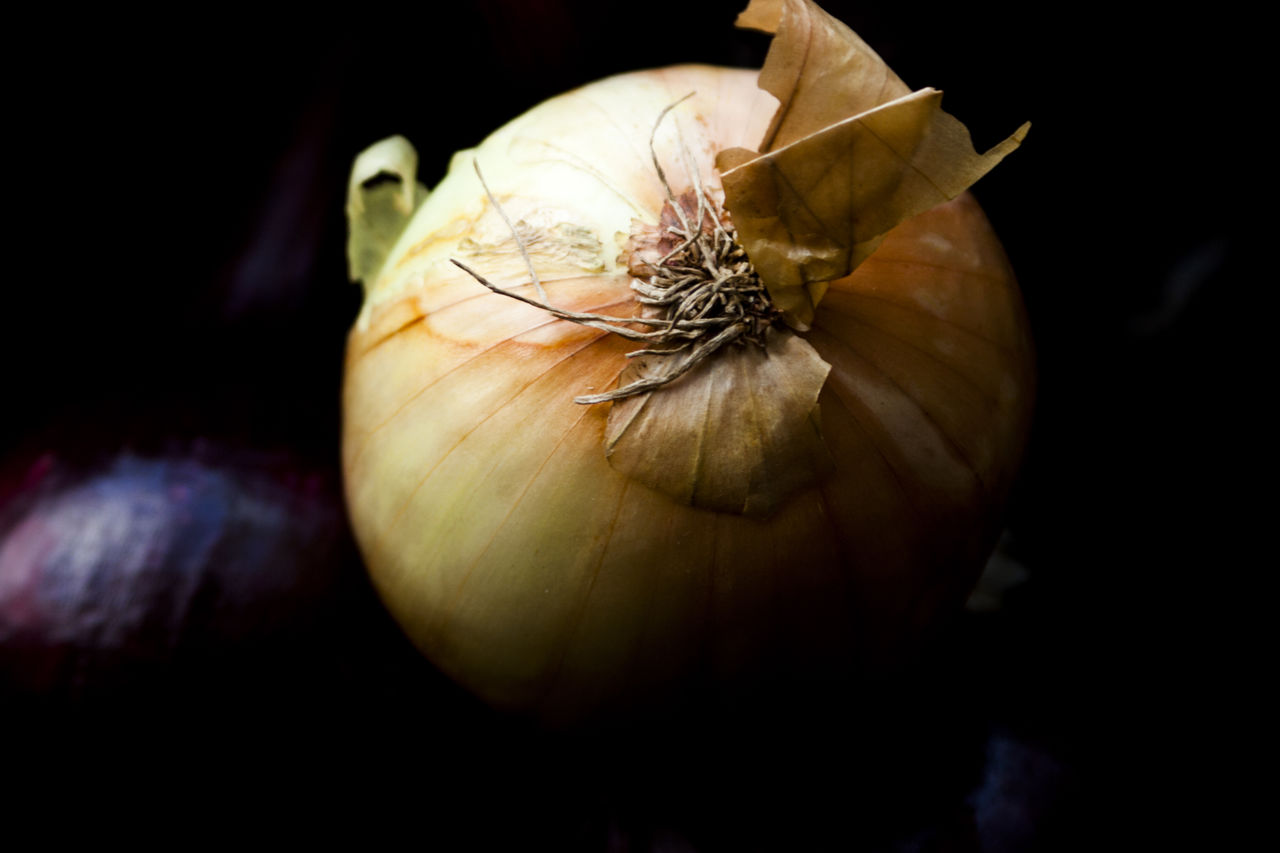 food and drink, food, healthy eating, vegetable, black background, no people, freshness, close-up, studio shot, indoors, pumpkin, day