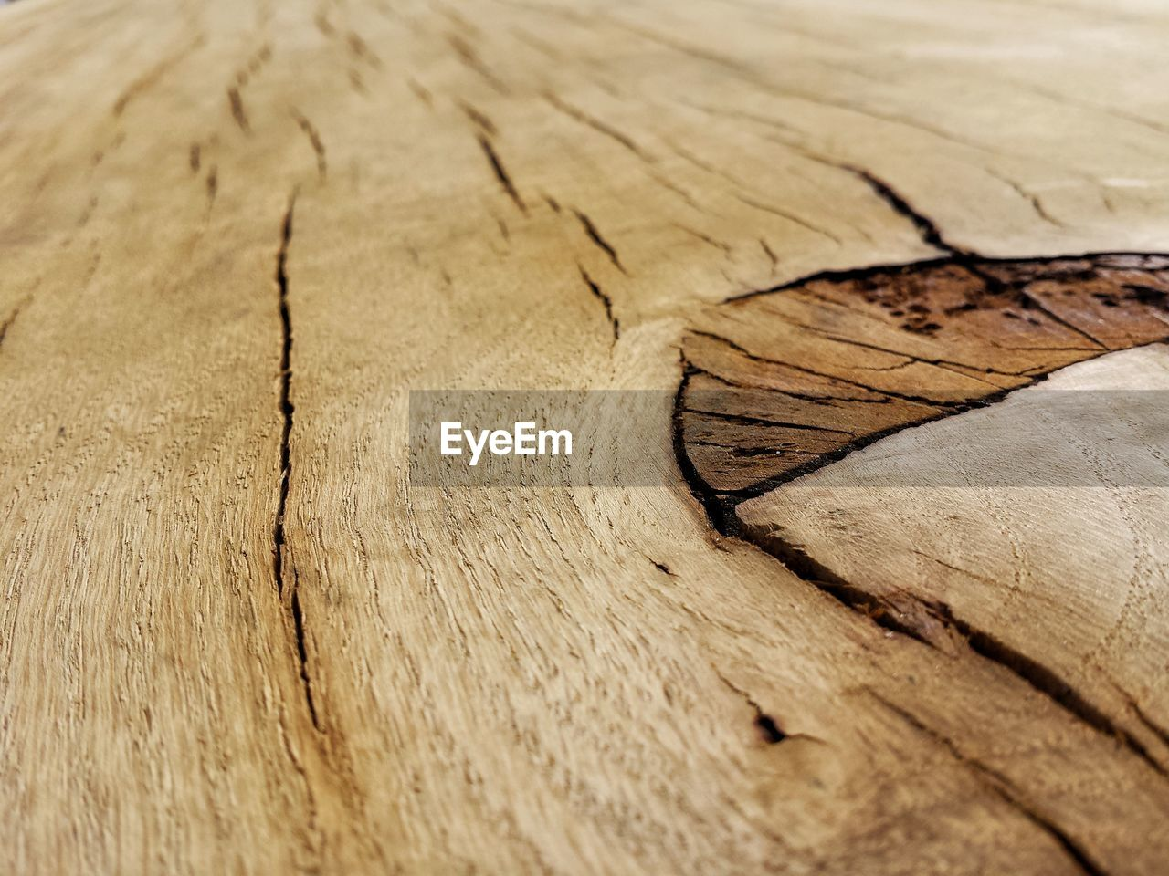 wood - material, pattern, cracked, full frame, no people, close-up, textured, backgrounds, tree, day, brown, natural pattern, nature, outdoors, selective focus, wood, rough, high angle view, dry, bark, tree ring, climate, arid climate, wood grain