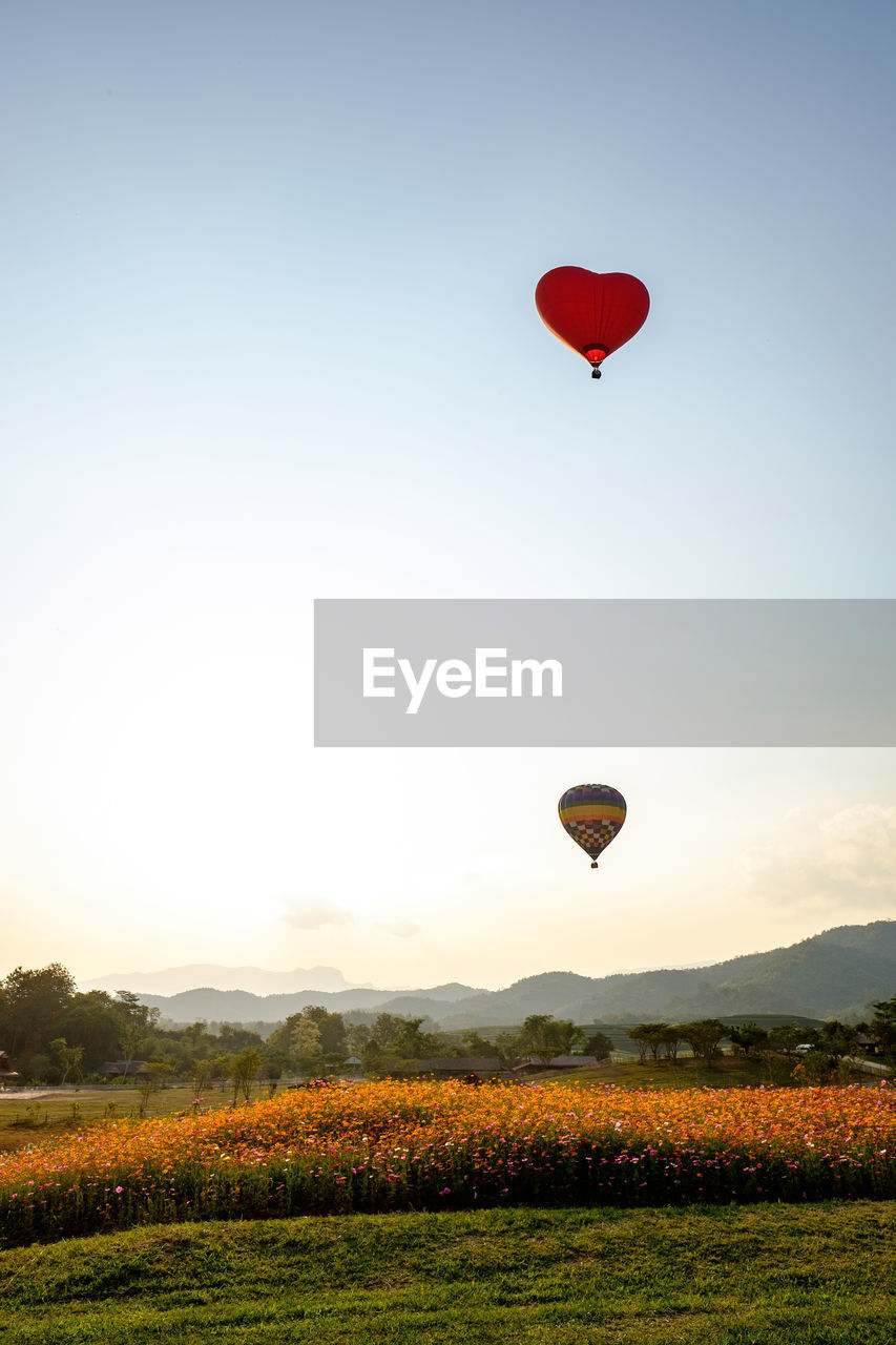 sky, air vehicle, hot air balloon, beauty in nature, flying, nature, balloon, field, plant, adventure, environment, land, mid-air, red, landscape, scenics - nature, transportation, tranquil scene, clear sky, tranquility, outdoors, no people