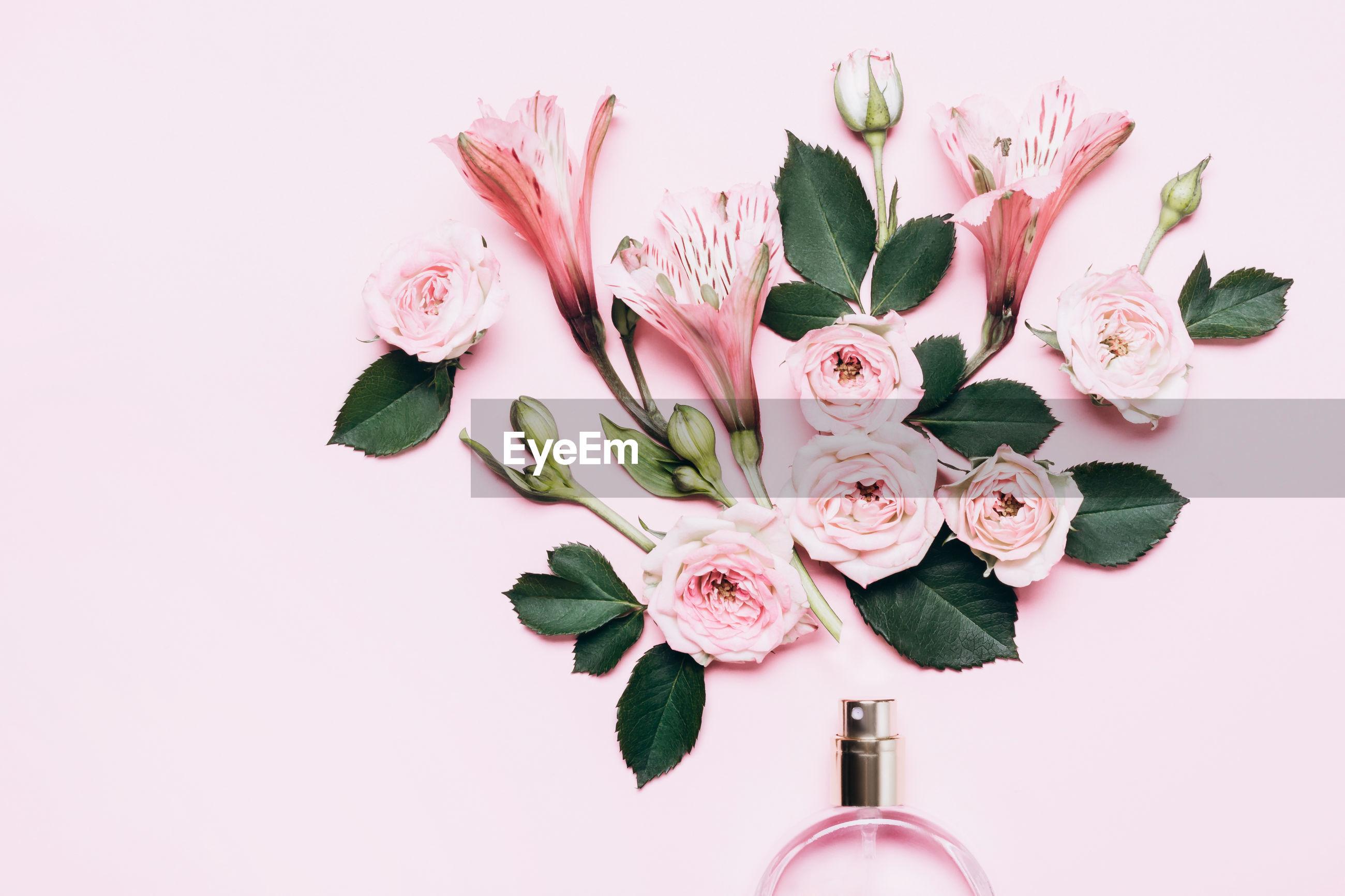 CLOSE-UP OF PINK ROSE FLOWER IN VASE