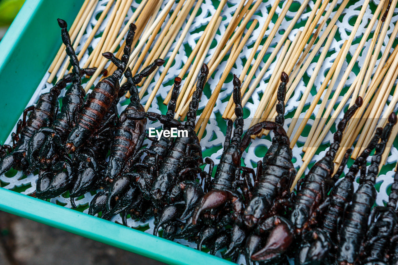Close-Up Of Fried Scorpions In Container