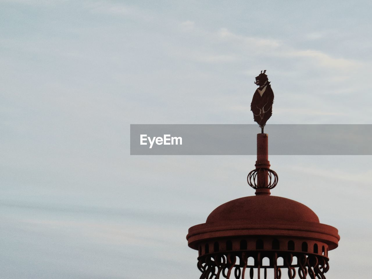 no people, sky, bird, low angle view, animal themes, outdoors, day, statue, perching, building exterior, nature, close-up