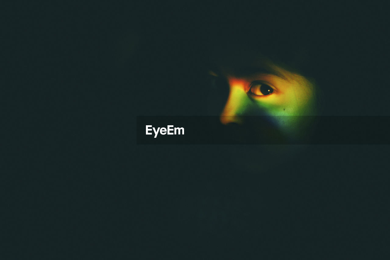 human eye, copy space, spooky, eyeball, one animal, human body part, looking at camera, iris - eye, portrait, black background, indoors, animal themes, halloween, close-up, eyesight, one person, people