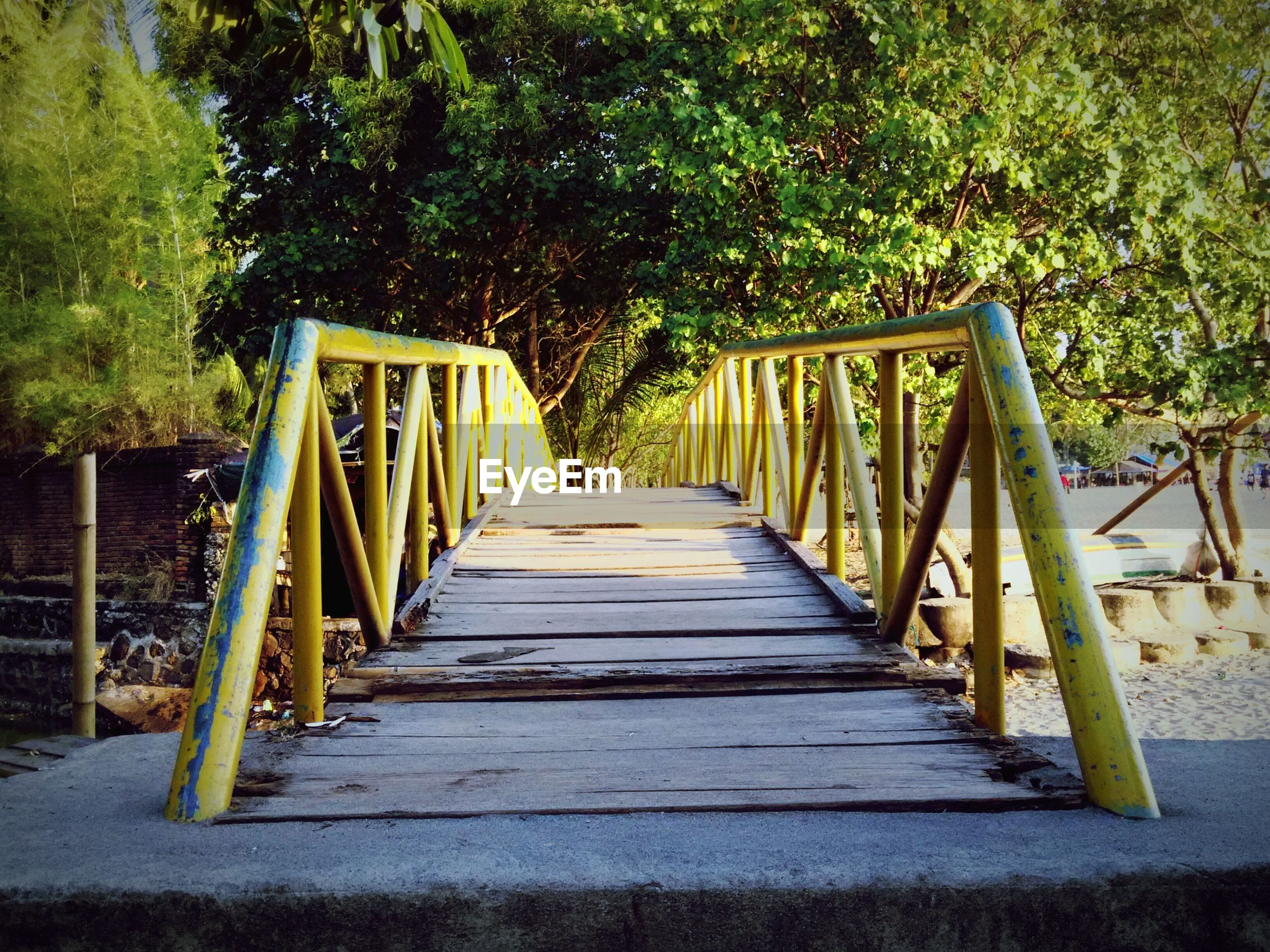 the way forward, railing, tree, footbridge, diminishing perspective, wood - material, connection, built structure, bridge - man made structure, vanishing point, wooden, architecture, boardwalk, long, tranquility, nature, no people, walkway, growth, sunlight