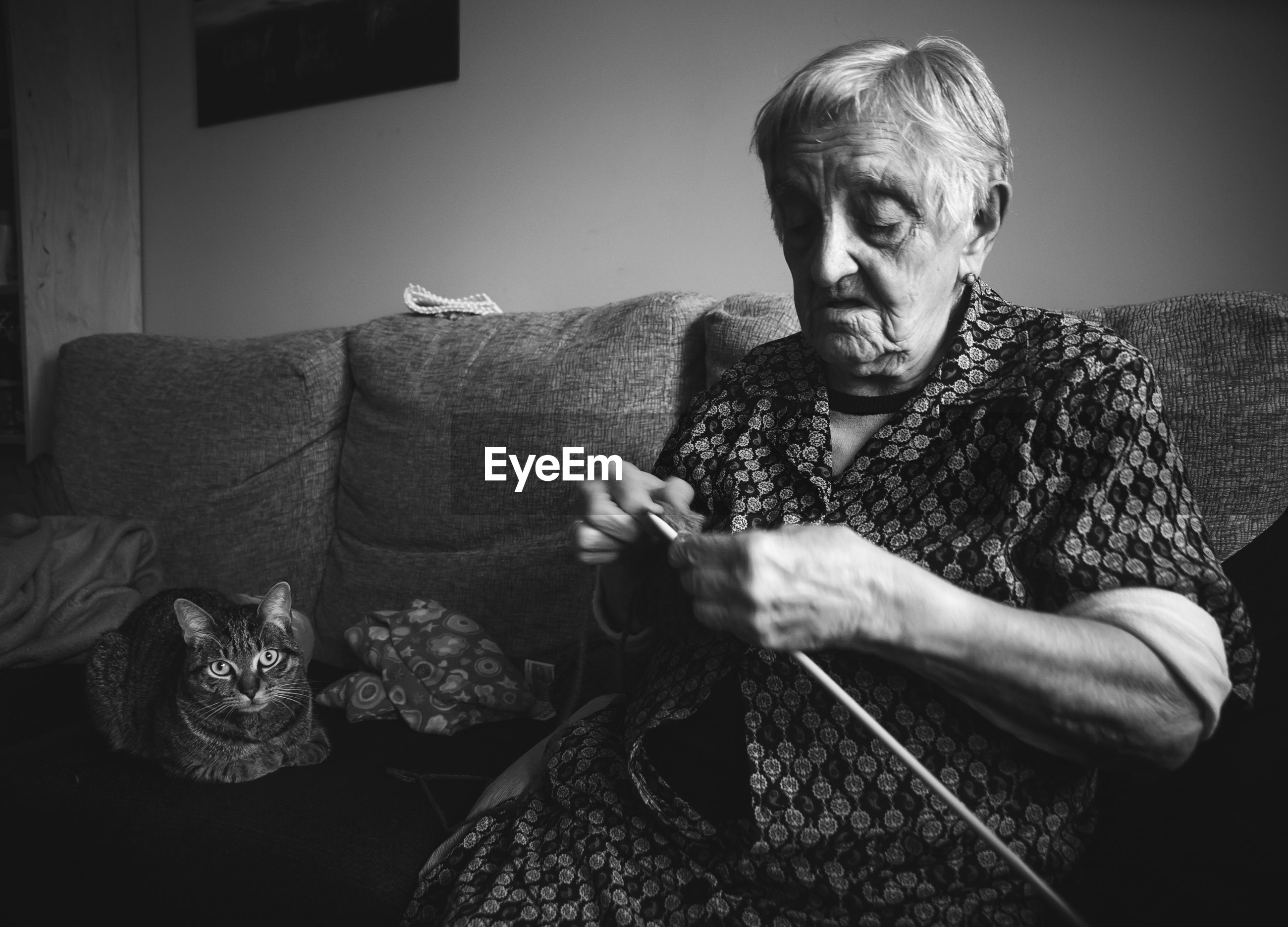 Senior woman knitting wool while sitting with cat on sofa at home