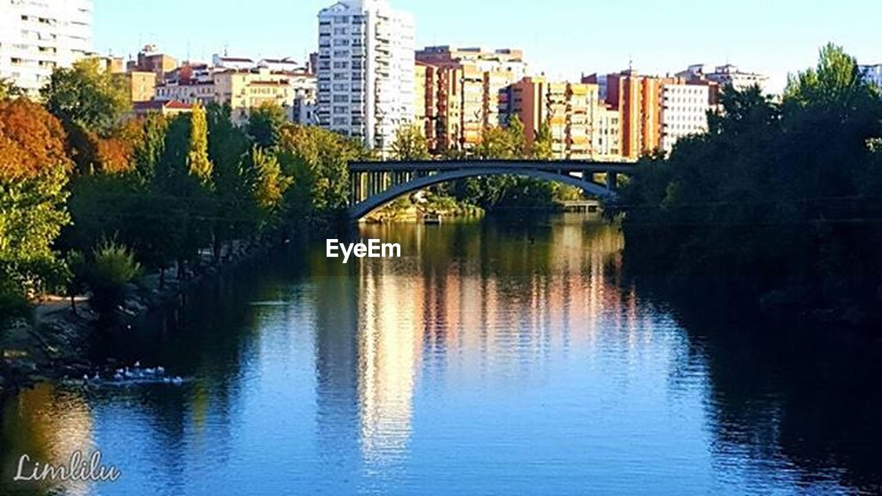 architecture, bridge - man made structure, built structure, reflection, connection, river, water, building exterior, city, tree, city life, waterfront, outdoors, cityscape, day, no people, skyscraper, urban skyline, sky, nature
