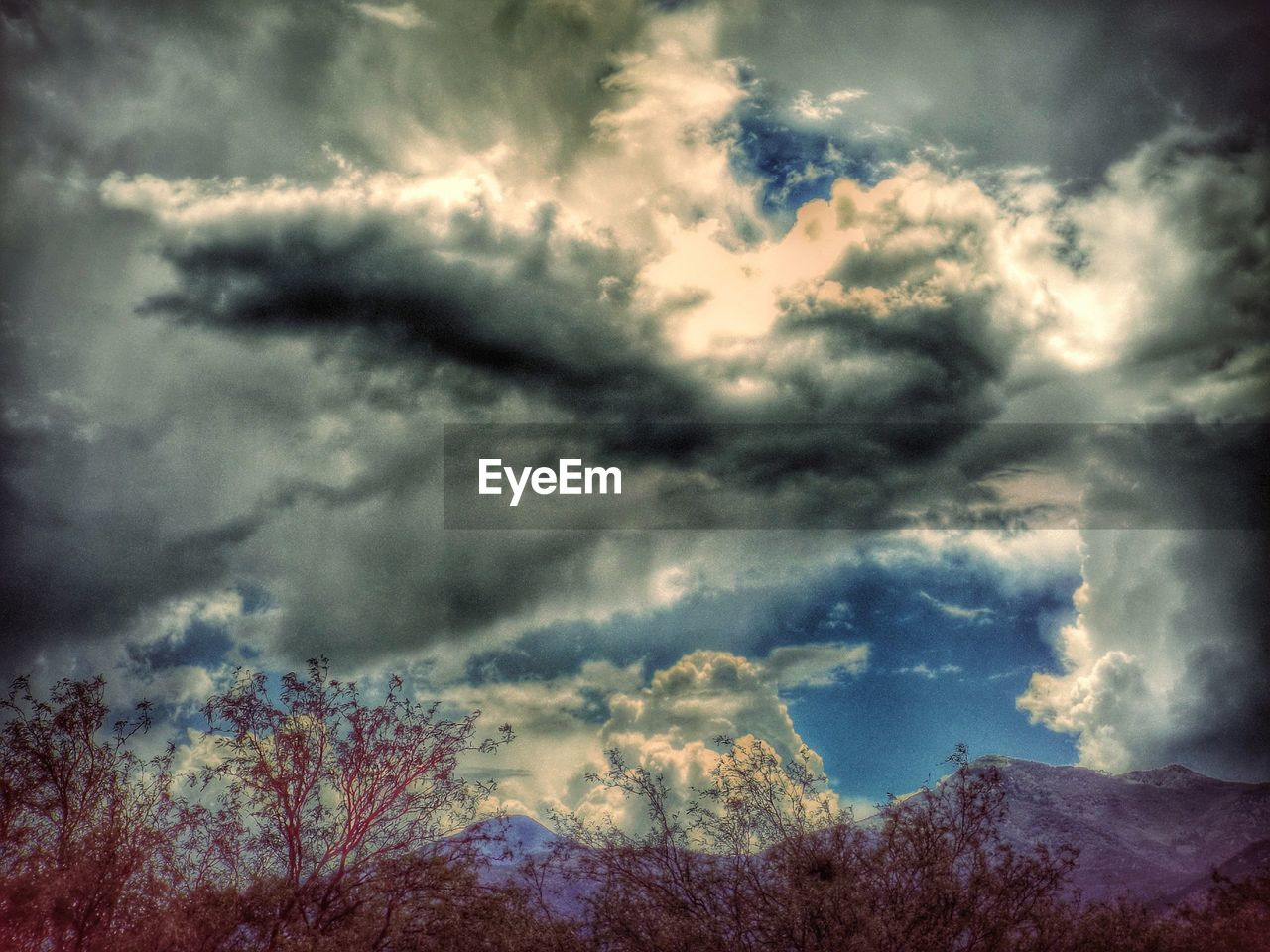 sky, nature, cloud - sky, weather, beauty in nature, cloudscape, dramatic sky, storm cloud, atmospheric mood, scenics, tranquility, tranquil scene, majestic, outdoors, storm, low angle view, silhouette, no people, awe, day, landscape, tree