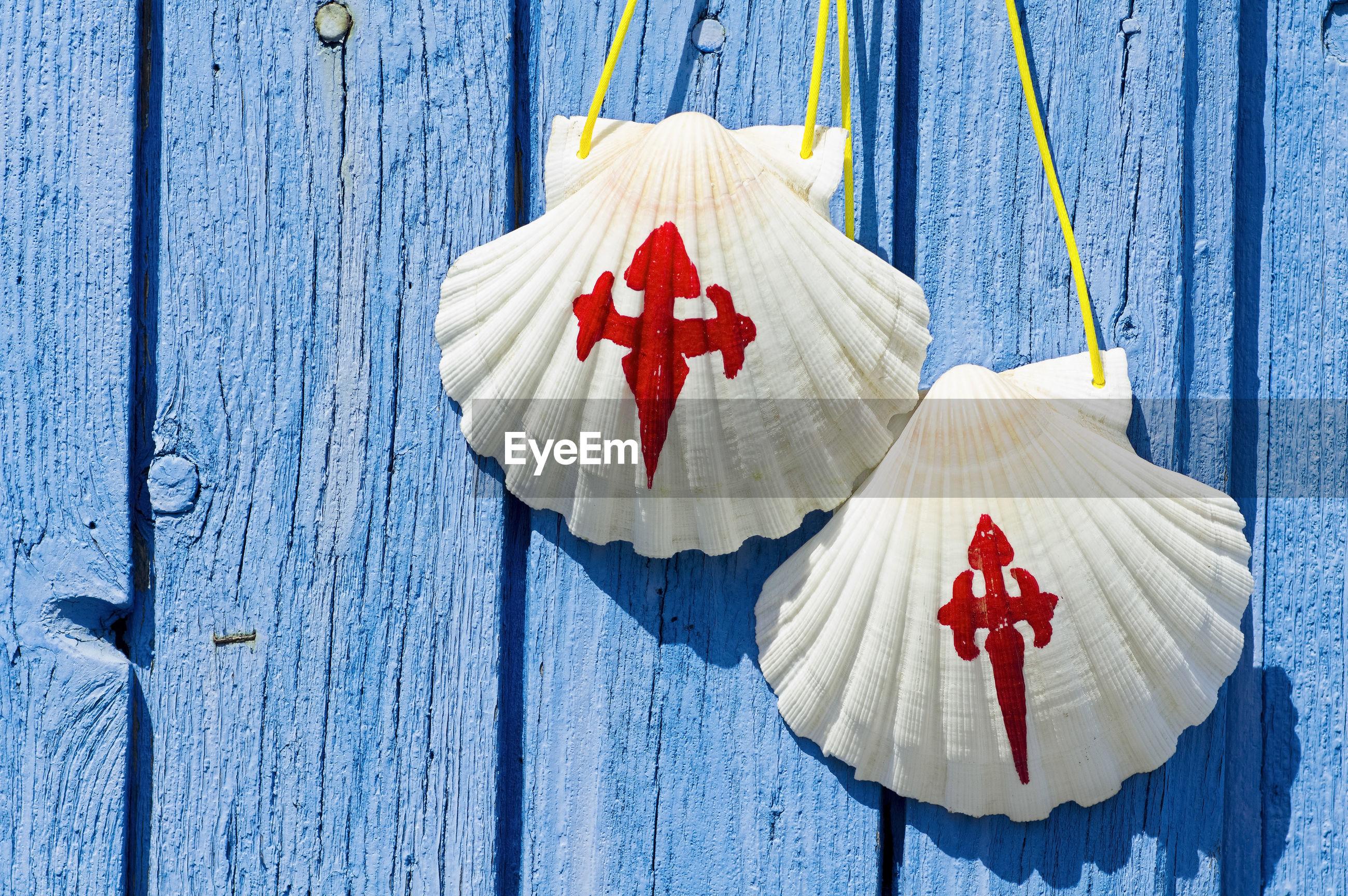 Close-up of pilgrim scallop shells on blue wooden door