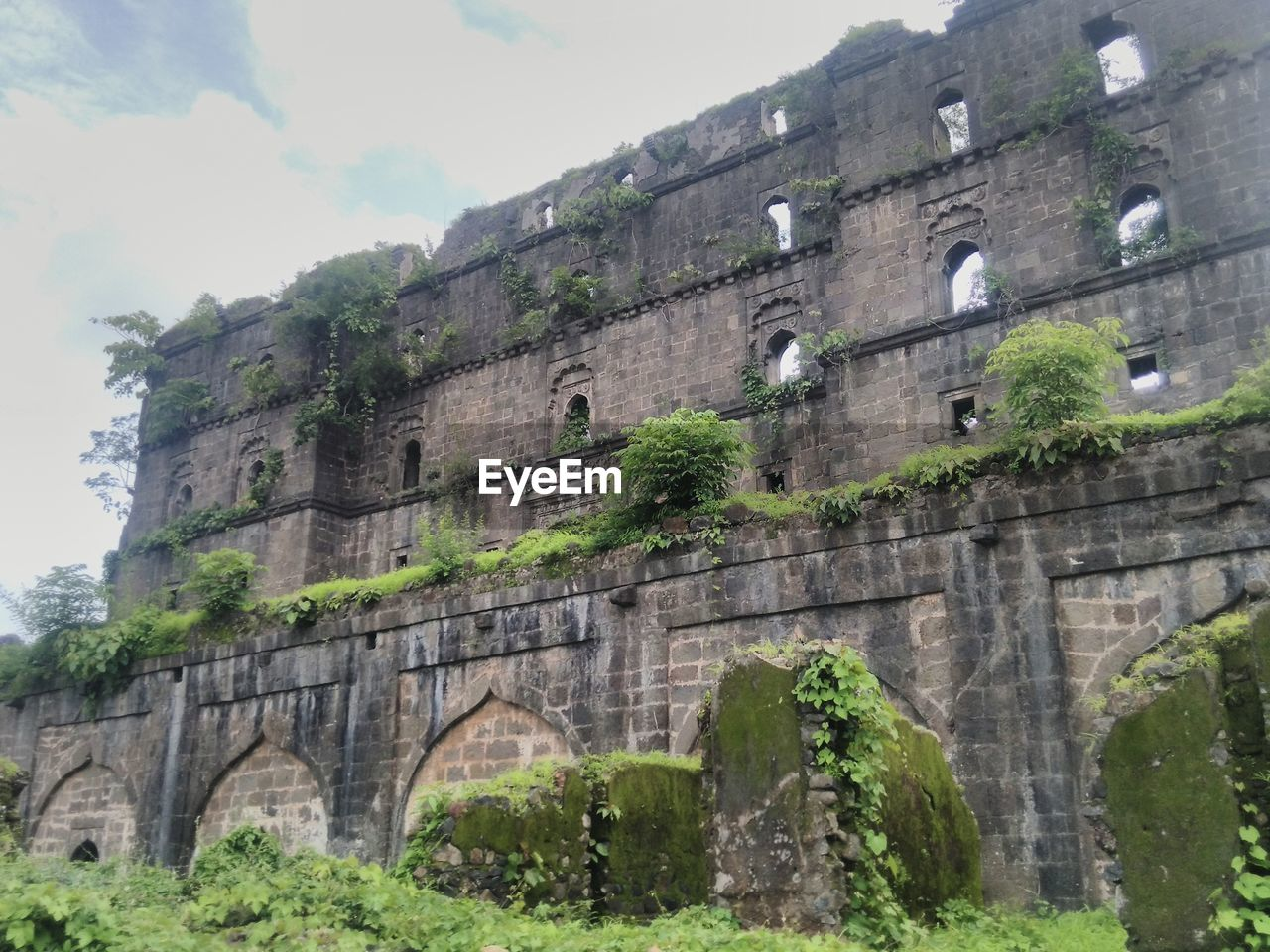 history, architecture, built structure, old ruin, travel destinations, ancient, tree, low angle view, outdoors, day, sky, no people, building exterior, ancient civilization