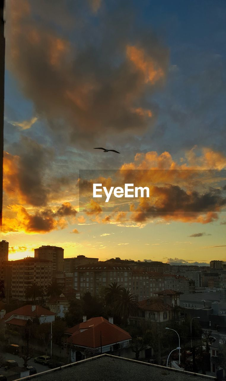 sunset, building exterior, architecture, built structure, bird, cloud - sky, sky, city, animal themes, one animal, cityscape, flying, orange color, no people, animals in the wild, outdoors, nature, beauty in nature, spread wings, day