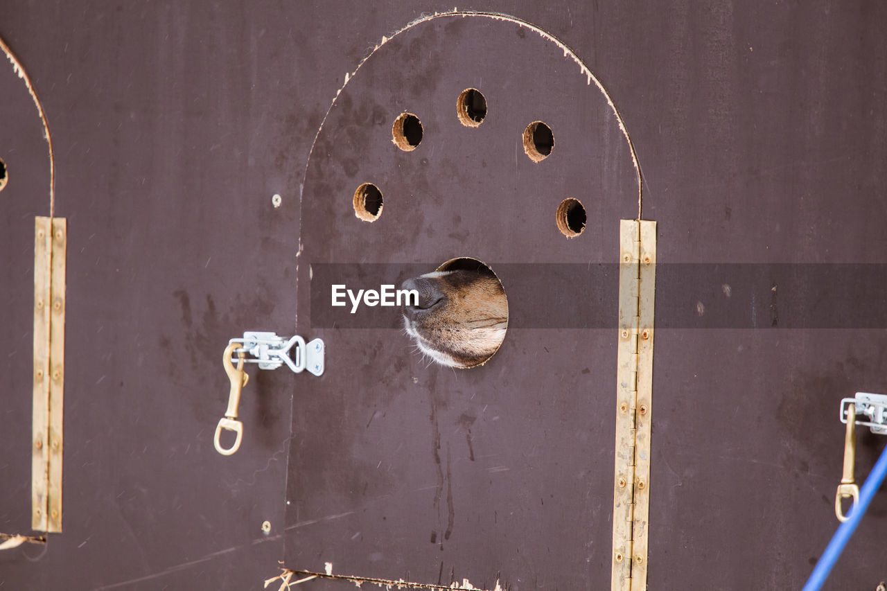metal, close-up, door, no people, entrance, protection, security, rusty, safety, lock, wood - material, keyhole, day, indoors, old, doorknob, knob, hole, latch, alloy