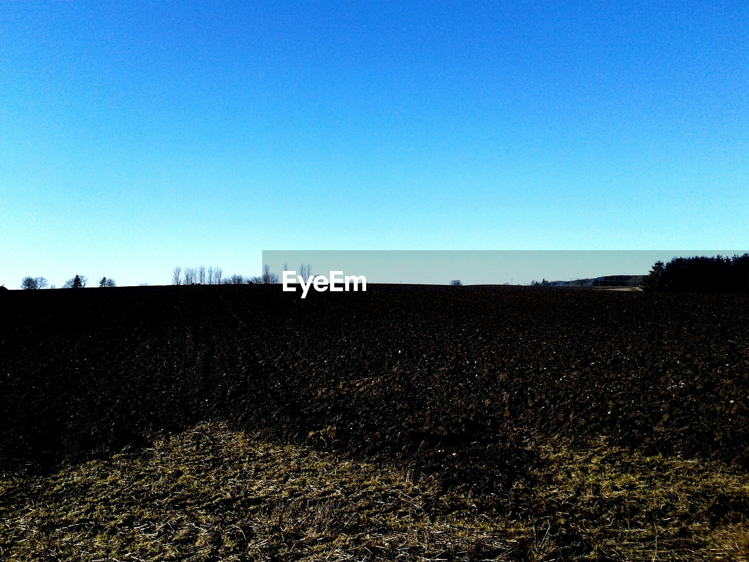 clear sky, copy space, blue, landscape, tranquility, tranquil scene, scenics, field, nature, beauty in nature, horizon over land, outdoors, remote, sunlight, non-urban scene, no people, idyllic, day, sand, solitude