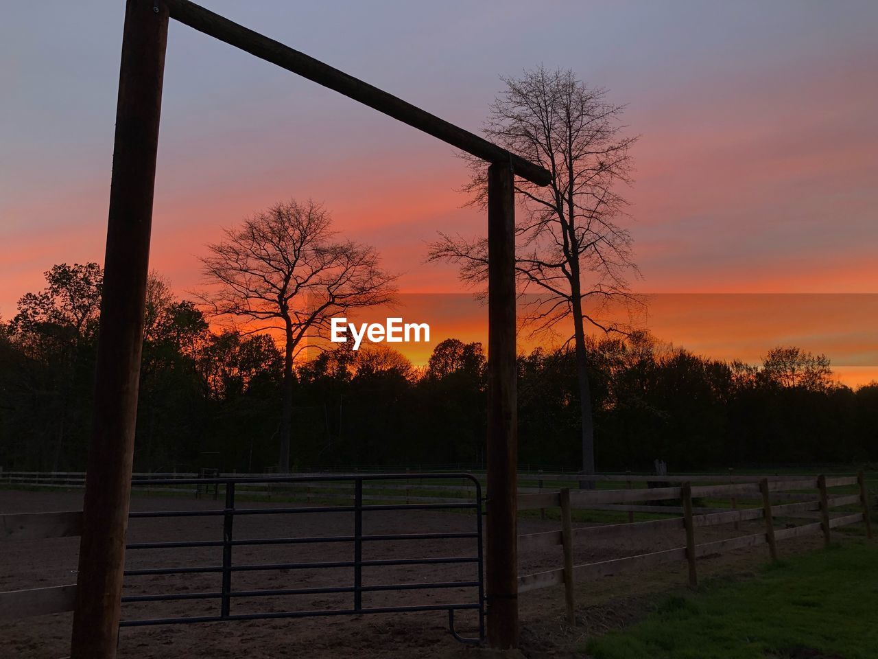sunset, sky, barrier, fence, boundary, tree, orange color, field, no people, plant, beauty in nature, nature, scenics - nature, security, tranquility, protection, safety, land, tranquil scene, landscape, outdoors