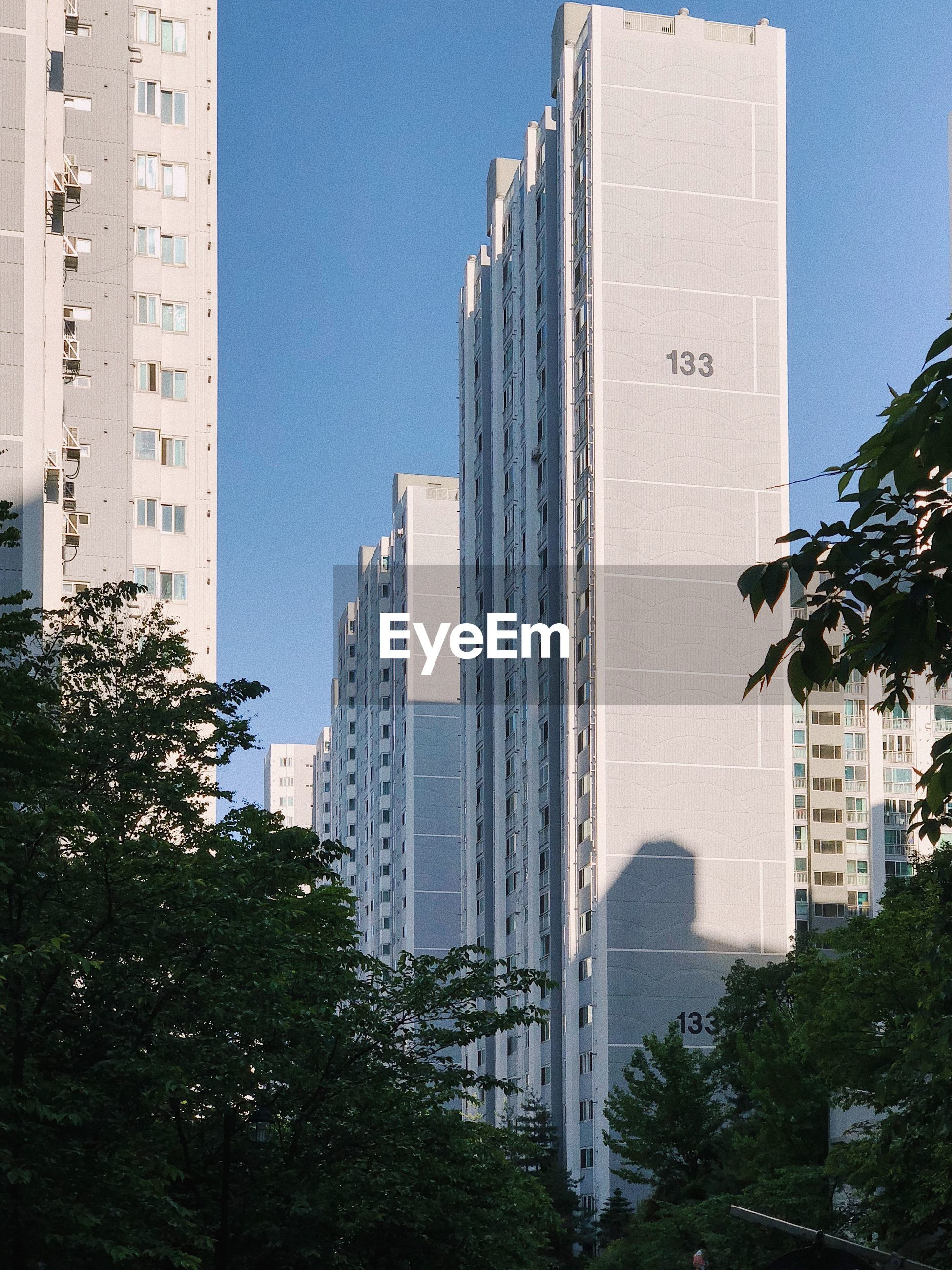building exterior, architecture, built structure, building, city, tree, sky, plant, nature, office building exterior, no people, clear sky, tall - high, day, skyscraper, tower, residential district, outdoors, sunlight, growth, cityscape, apartment