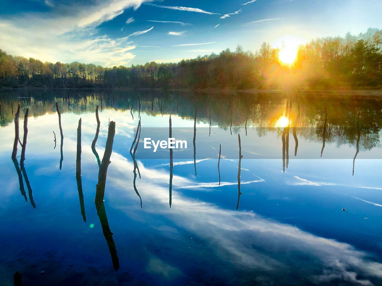 tranquility, water, reflection, beauty in nature, scenics - nature, sky, tranquil scene, lake, cloud - sky, tree, nature, plant, no people, idyllic, non-urban scene, sunset, day, outdoors, sunlight, reflection lake