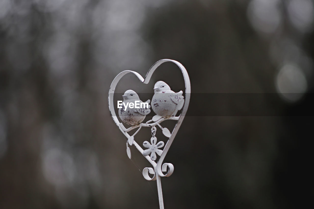 love, positive emotion, focus on foreground, heart shape, close-up, emotion, no people, design, day, shape, creativity, nature, outdoors, representation, metal, selective focus, animal representation, plant, white color