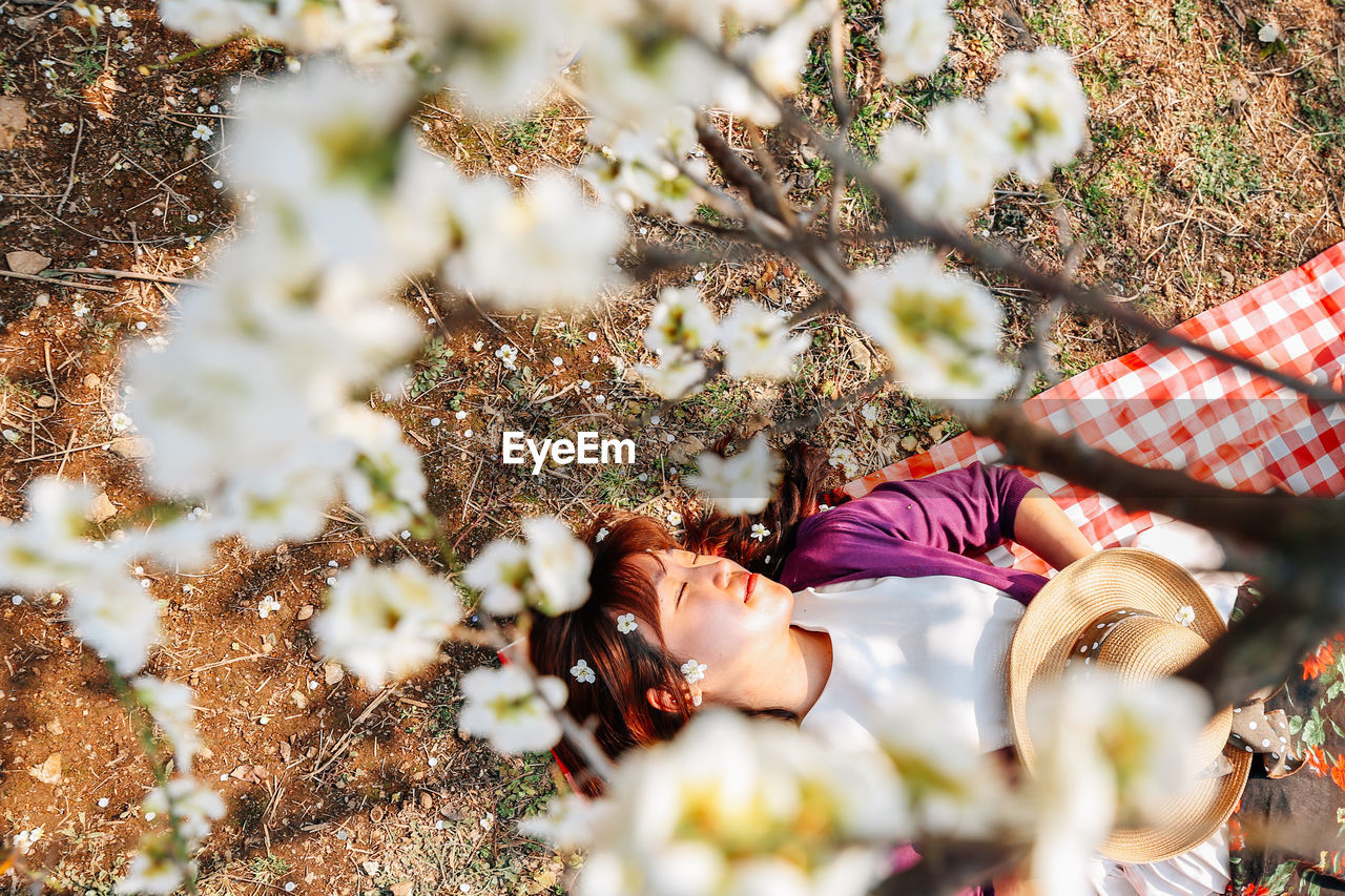 real people, plant, selective focus, nature, lifestyles, leisure activity, flowering plant, day, one person, flower, women, relaxation, lying down, growth, freshness, field, beauty in nature, adult, land, outdoors