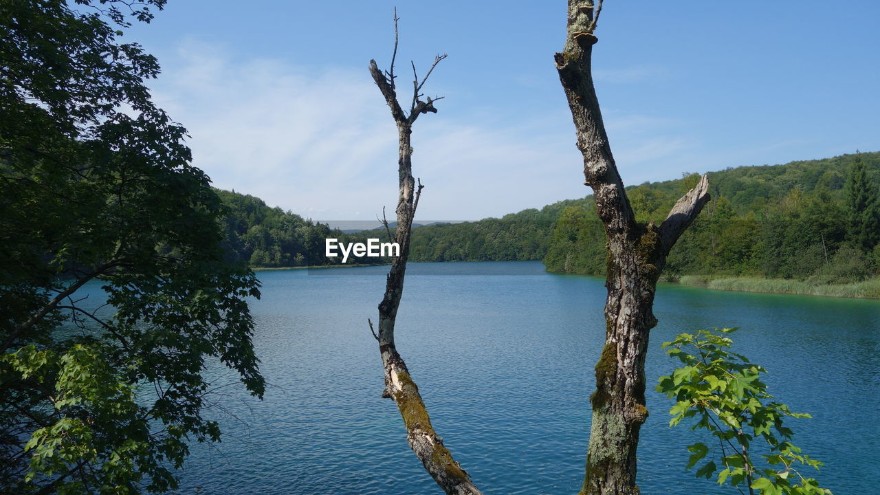 Scenic view of plitvice lakes national park