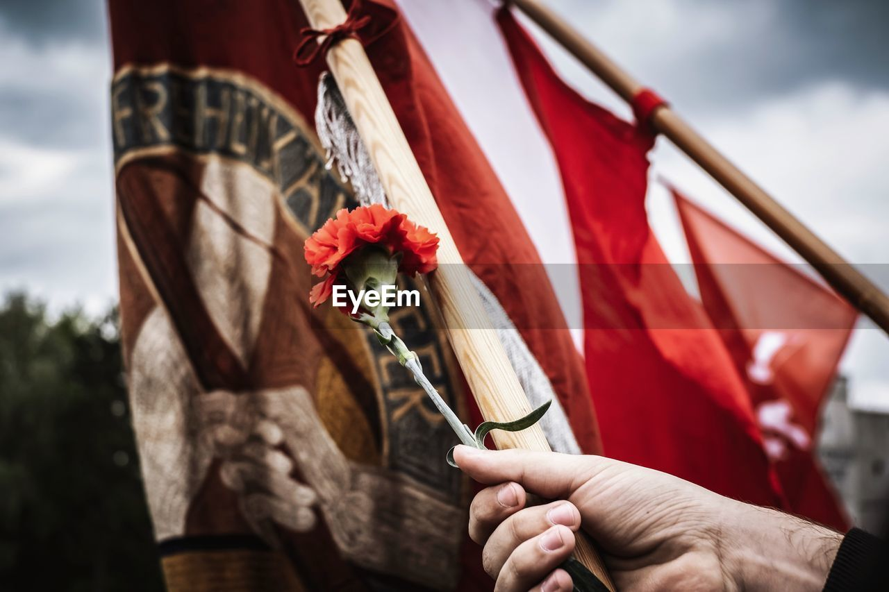 holding, focus on foreground, human hand, hand, red, nature, flower, real people, flowering plant, day, plant, flag, one person, human body part, outdoors, beauty in nature, patriotism, lifestyles, rose - flower