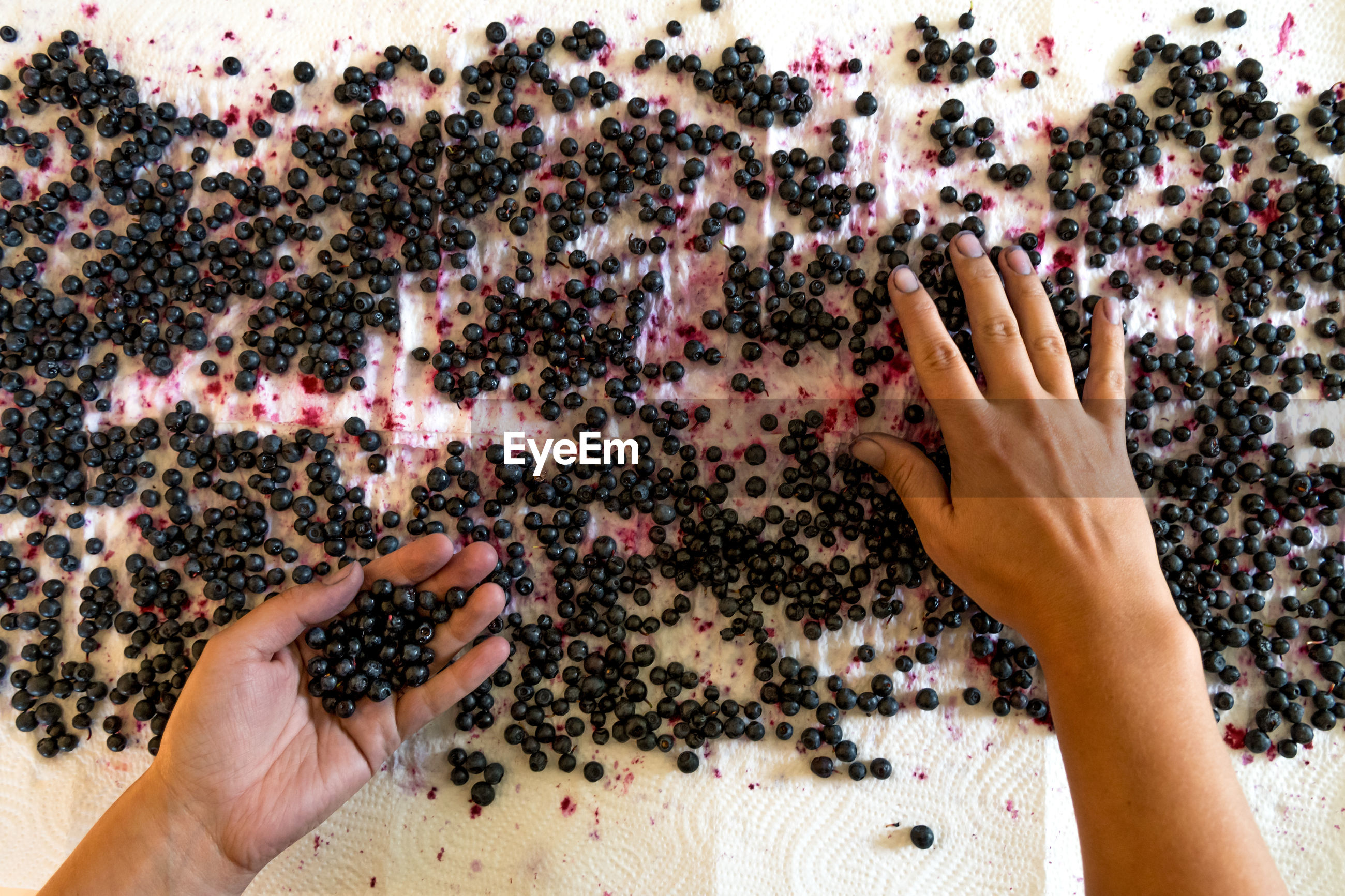 Cropped hands of mid adult woman cleaning blueberries on table
