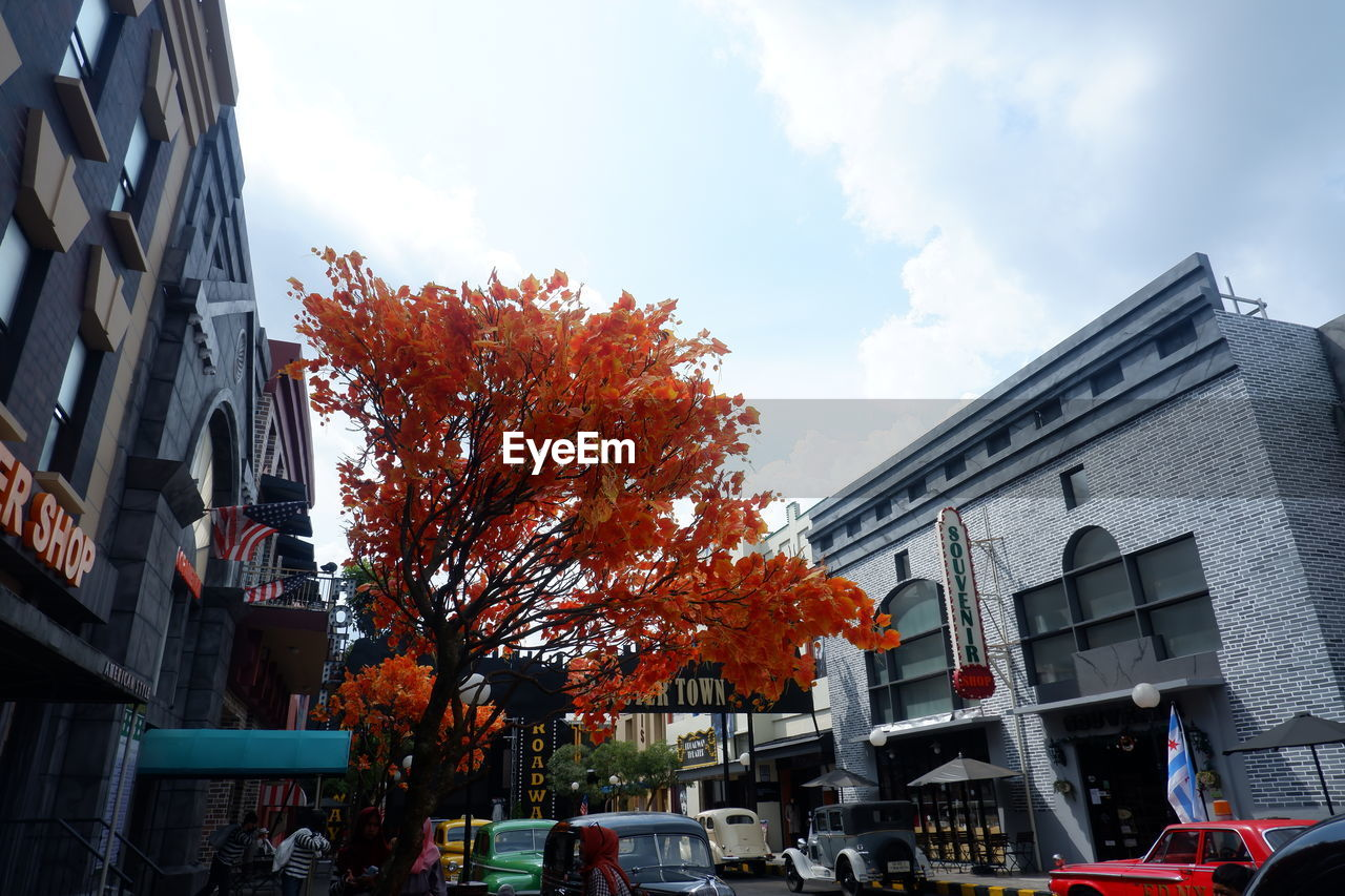 building exterior, architecture, built structure, sky, building, cloud - sky, nature, day, city, residential district, autumn, change, tree, motor vehicle, low angle view, outdoors, no people, car, mode of transportation, transportation