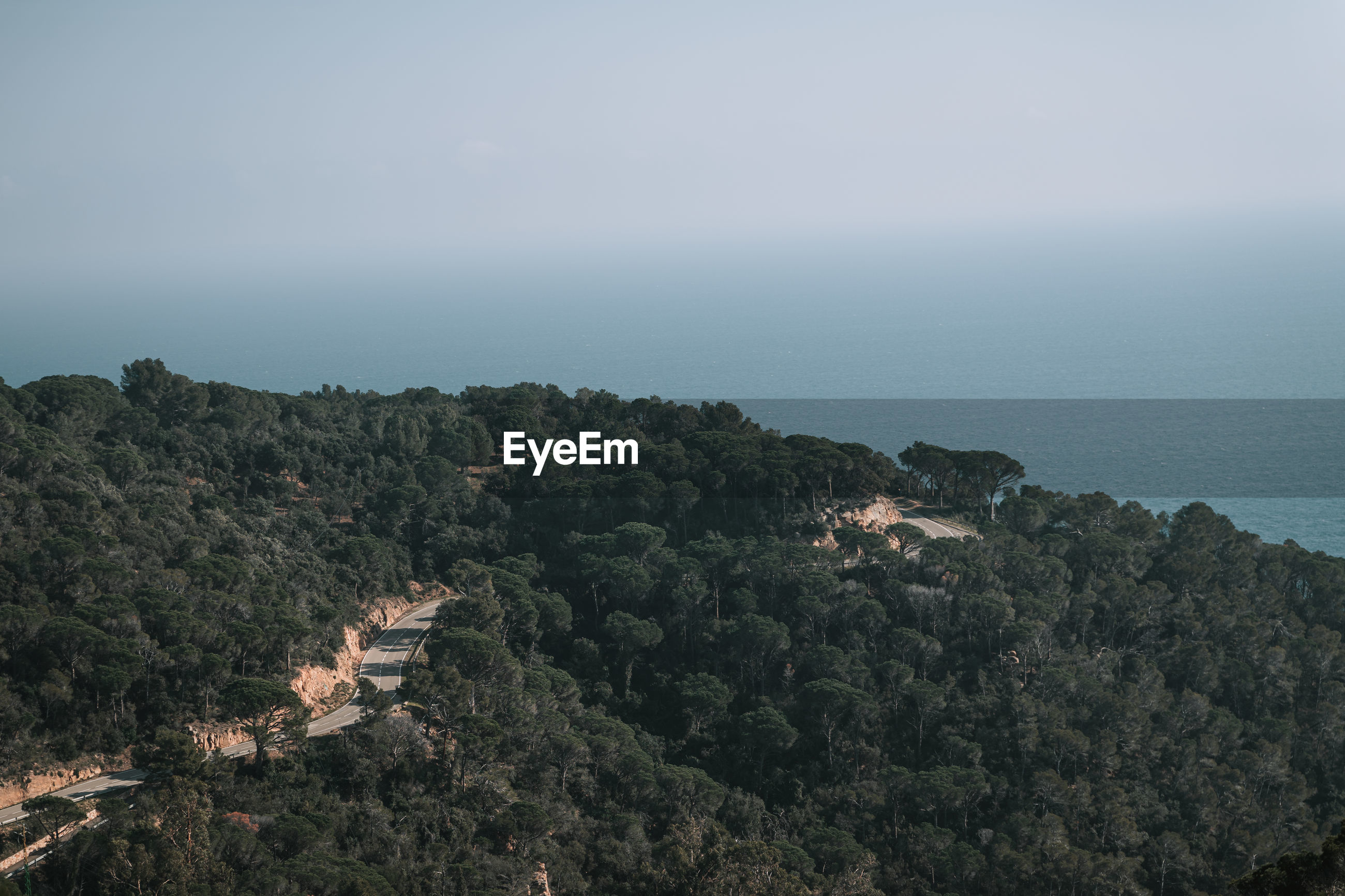 High angle view of trees and sea against sky