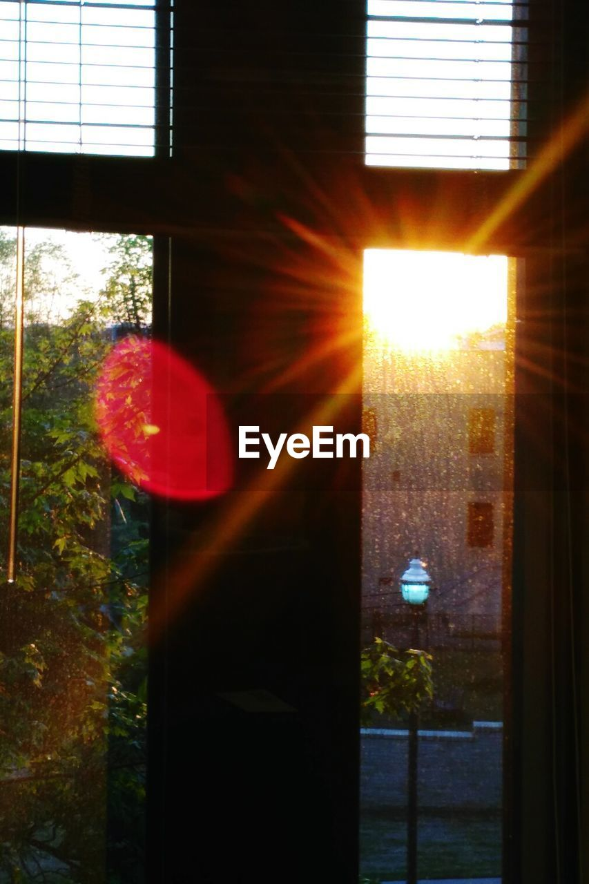 window, sunlight, sun, tree, architecture, indoors, day, no people, sunset, built structure, building exterior, close-up