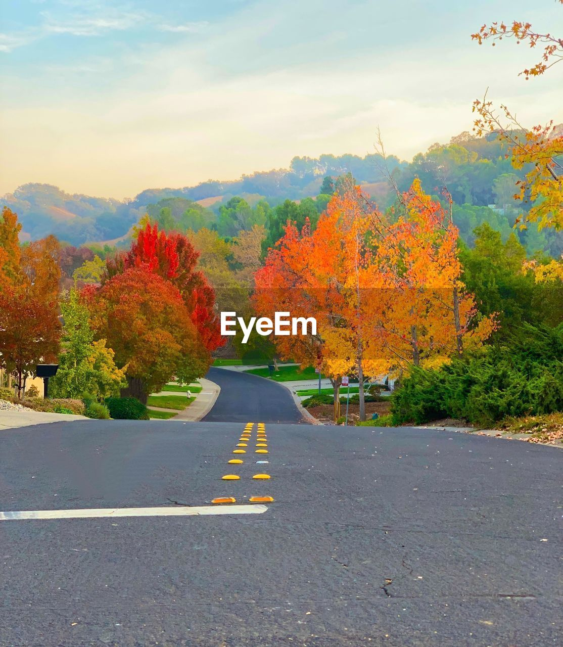 road, autumn, tree, plant, change, direction, transportation, sign, the way forward, beauty in nature, nature, no people, orange color, day, sky, marking, road marking, tranquility, cloud - sky, symbol, outdoors, dividing line