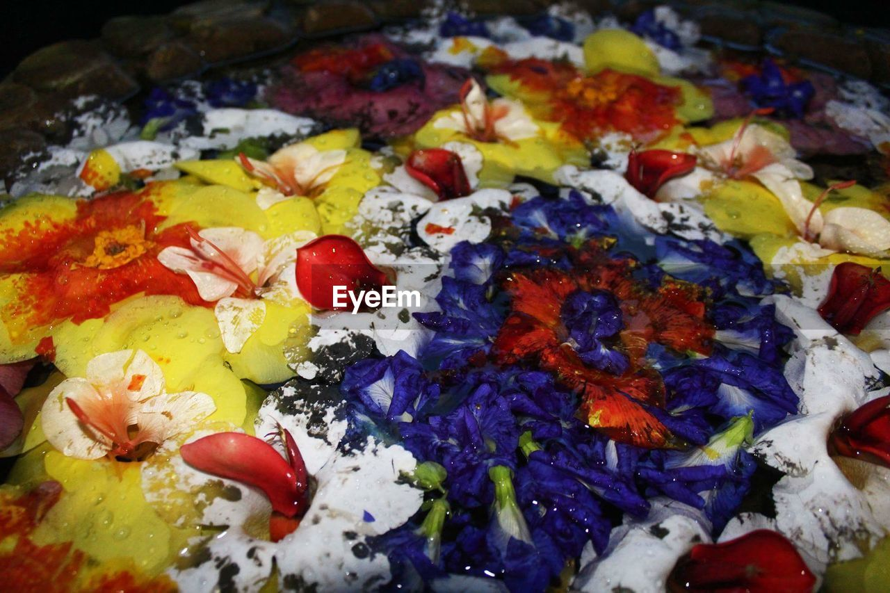 art and craft, multi colored, close-up, palette, indoors, variation, no people, ready-to-eat, freshness, day