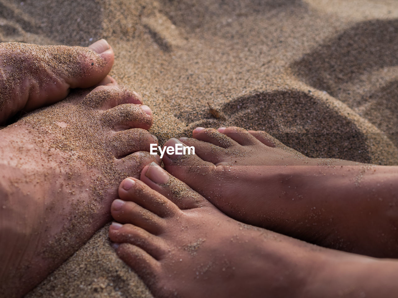 Low Section Of Man And Woman On Sand