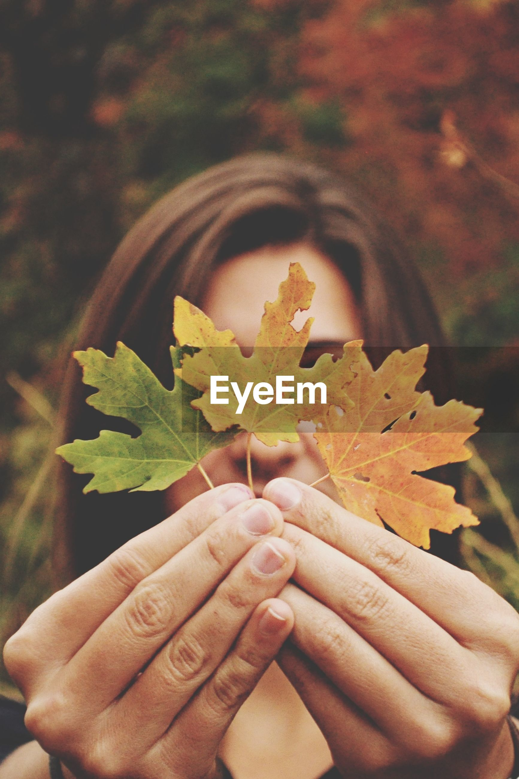 person, holding, part of, cropped, human finger, unrecognizable person, personal perspective, focus on foreground, lifestyles, close-up, leisure activity, leaf, freshness, men, nature, outdoors