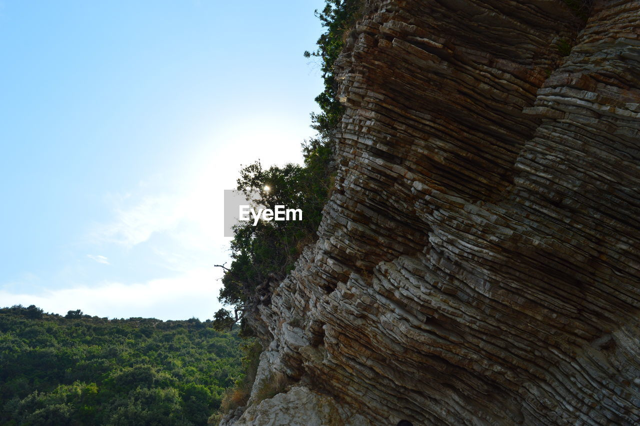 Low Angle View Of Tree On Cliff Against Sky