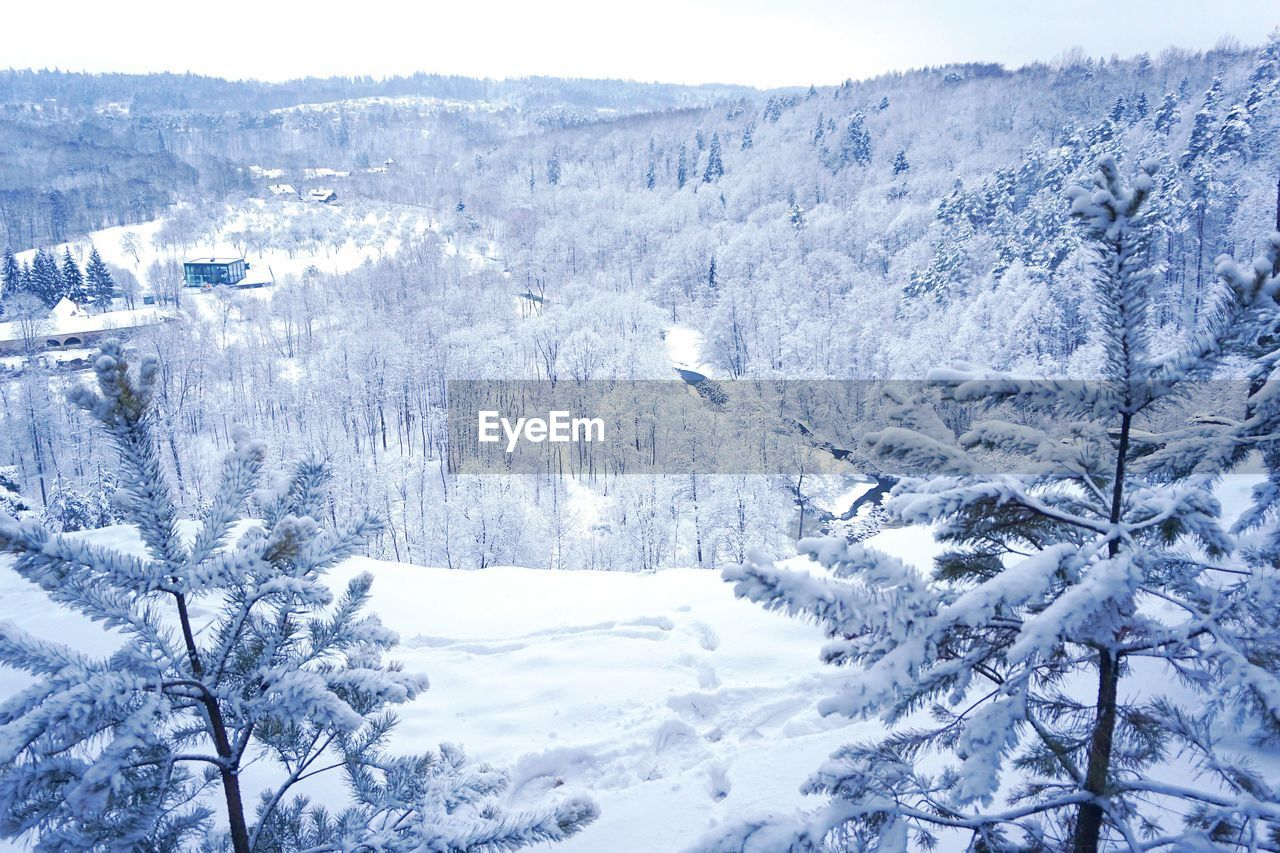 snow, winter, cold temperature, nature, beauty in nature, tranquility, no people, tranquil scene, outdoors, landscape, mountain, day, tree, scenics, range
