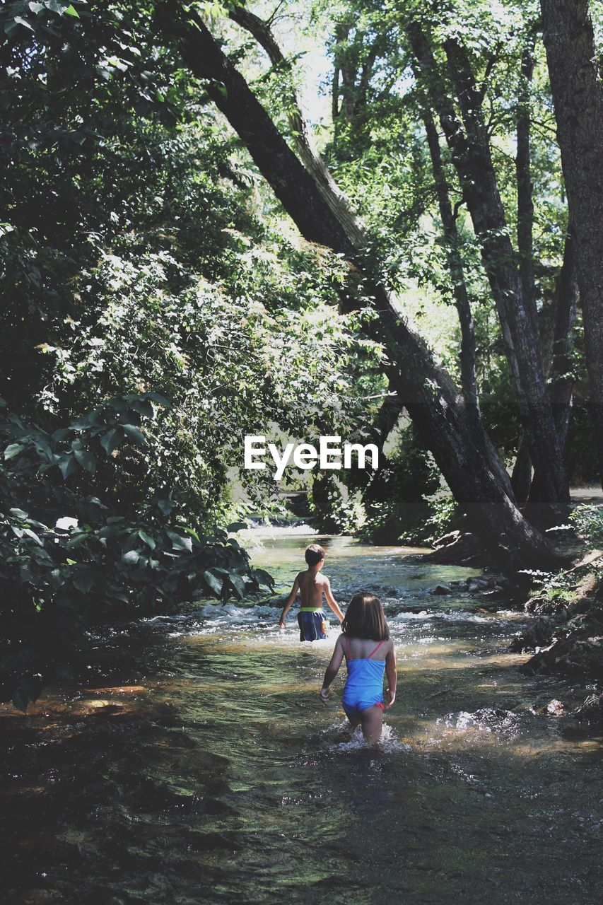 Rear view of siblings wading in river amidst trees