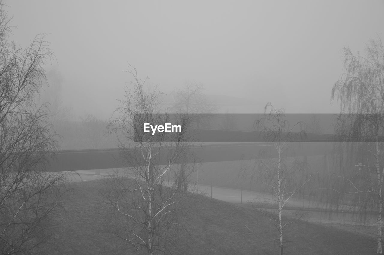 fog, tree, plant, sky, no people, beauty in nature, bare tree, nature, tranquility, cold temperature, winter, tranquil scene, scenics - nature, day, water, environment, lake, non-urban scene, hazy, outdoors