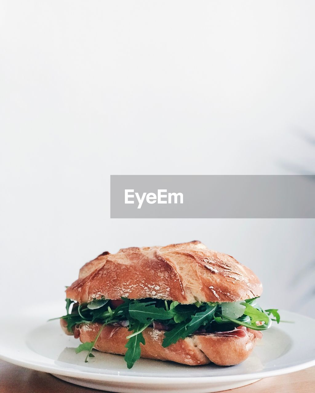 Close-up of fresh sandwich in plate against white background