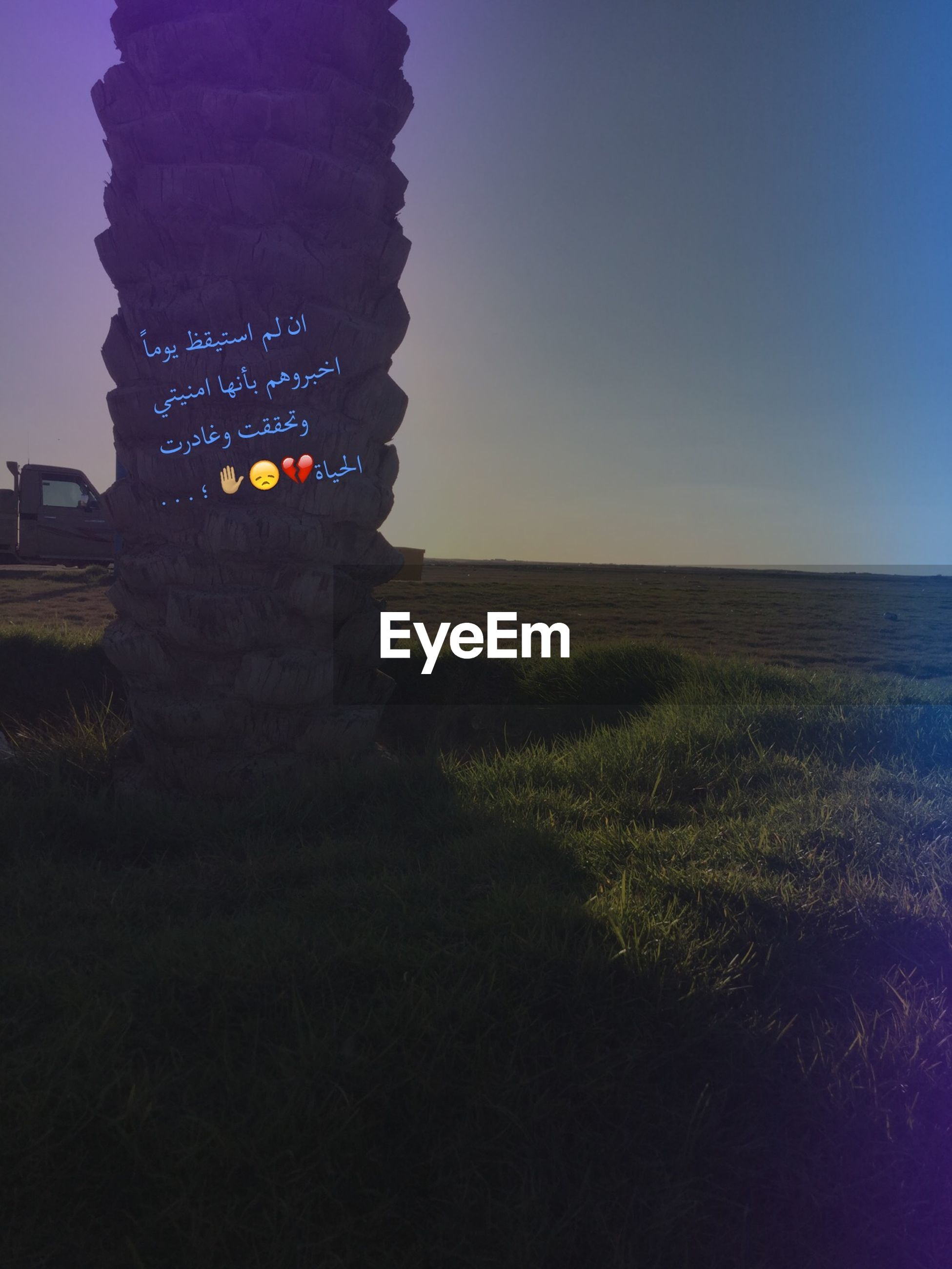 clear sky, blue, copy space, tranquility, tranquil scene, scenics, sky, grass, beauty in nature, nature, landscape, field, sunset, outdoors, idyllic, remote, sunlight, dusk, silhouette, non-urban scene