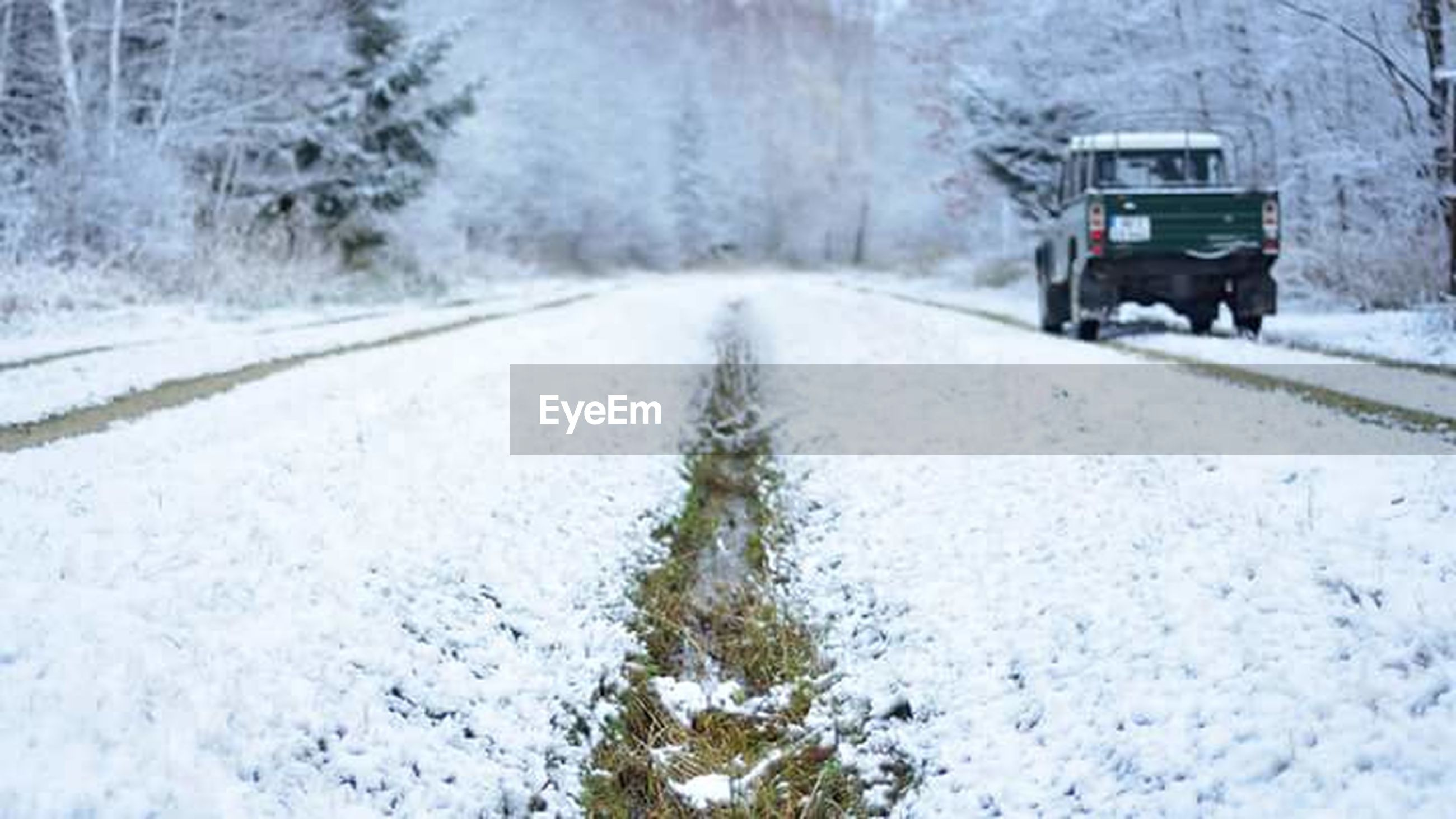 winter, snow, cold temperature, weather, transportation, snowing, nature, road, snowflake, outdoors, no people, day, snowdrift