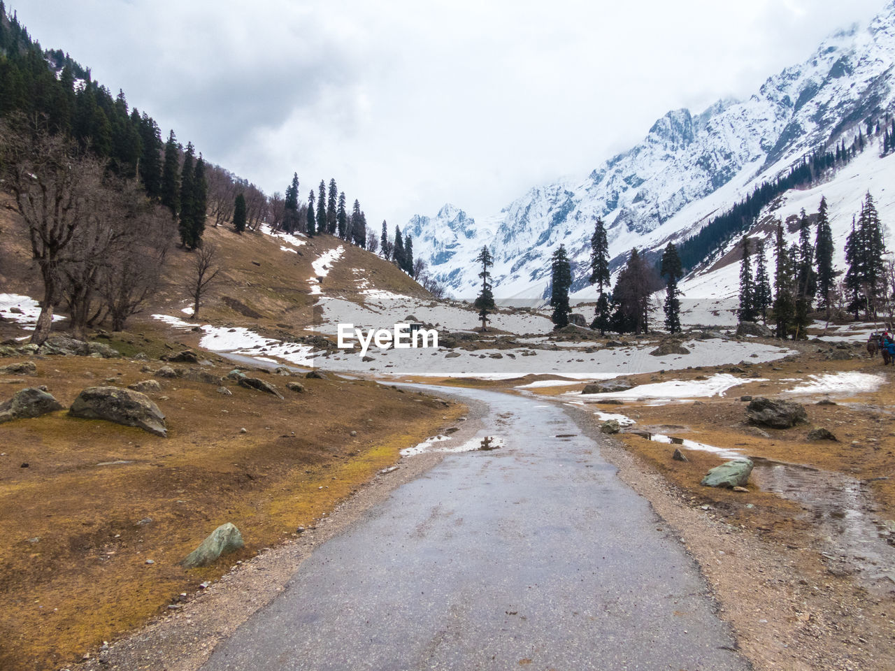 sky, mountain, beauty in nature, cloud - sky, snow, cold temperature, tranquil scene, plant, tranquility, winter, tree, nature, scenics - nature, road, no people, environment, day, landscape, the way forward, snowcapped mountain