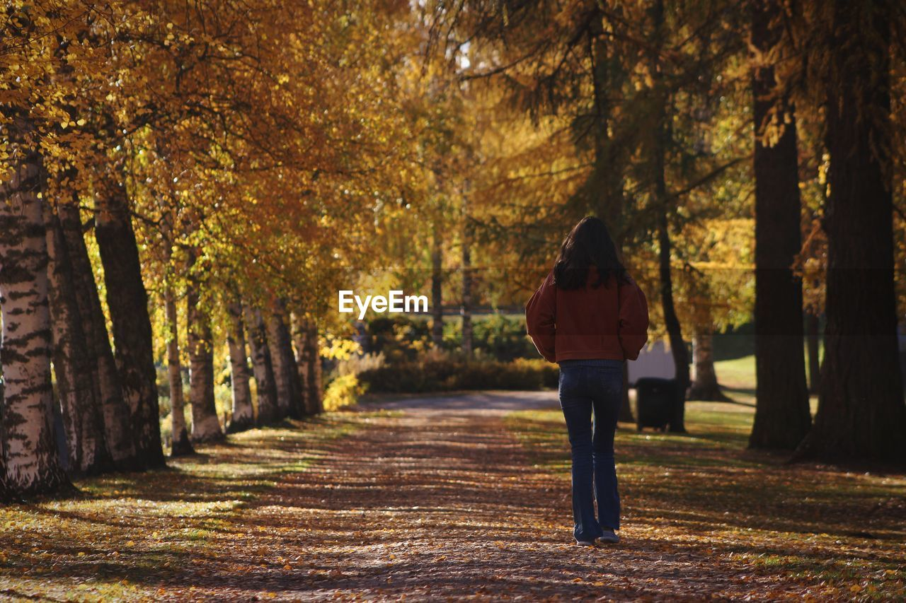 tree, plant, one person, real people, rear view, full length, nature, lifestyles, walking, land, autumn, tree trunk, trunk, day, standing, change, forest, leisure activity, beauty in nature, casual clothing, hair, hairstyle, outdoors, treelined