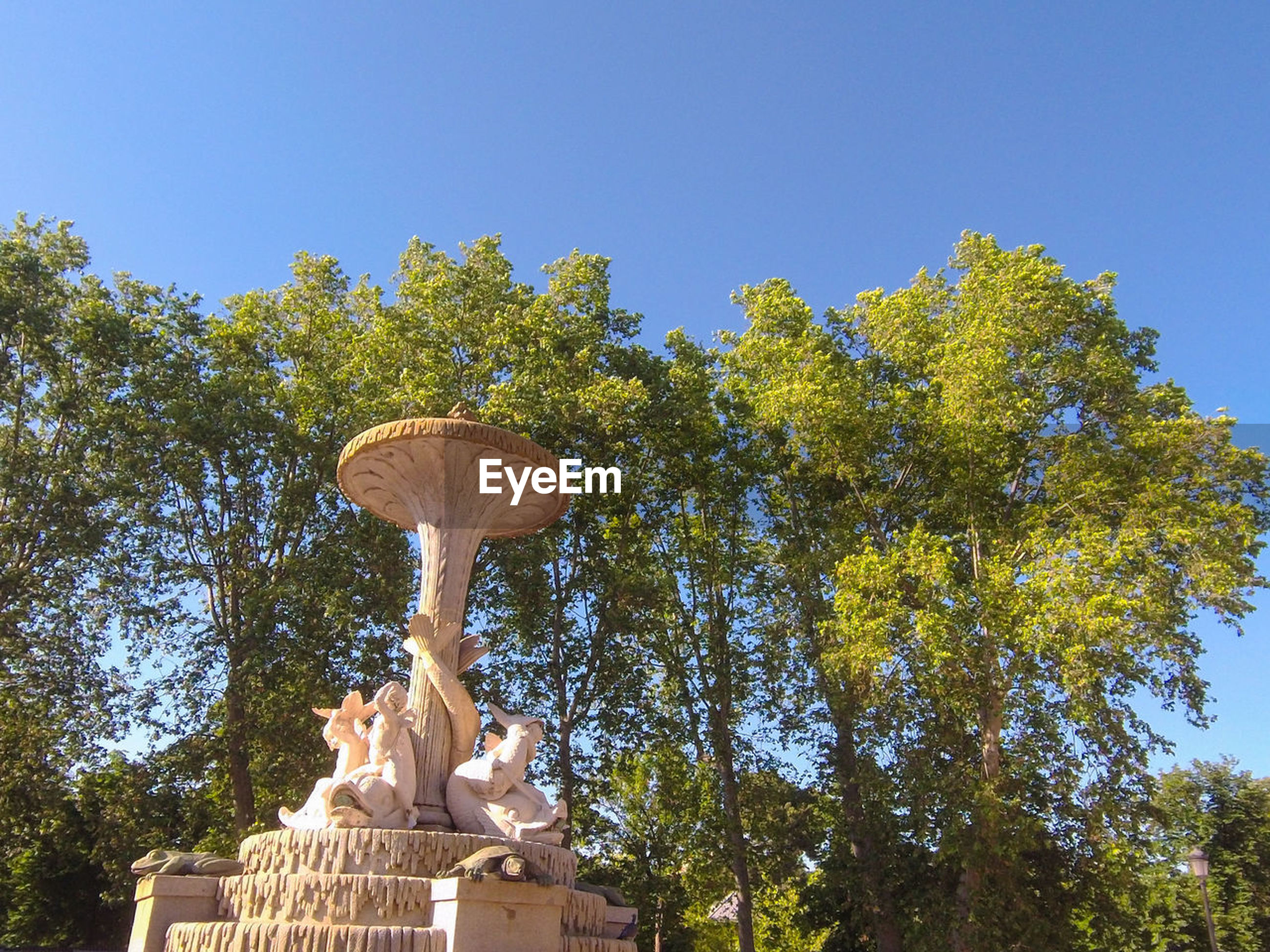 tree, plant, sky, nature, sculpture, low angle view, statue, no people, architecture, clear sky, representation, day, human representation, outdoors, blue, religion, travel destinations, autumn, growth, belief, sunny, travel, leaf
