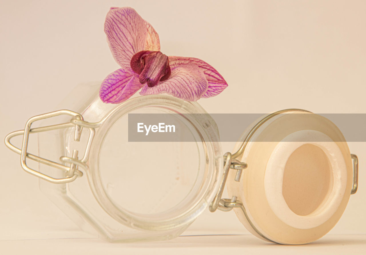 still life, indoors, glass - material, jar, studio shot, no people, close-up, white background, container, flower, table, freshness, flowering plant, lid, transparent, plant, pink color, high angle view, nature, wellbeing, purple, personal accessory