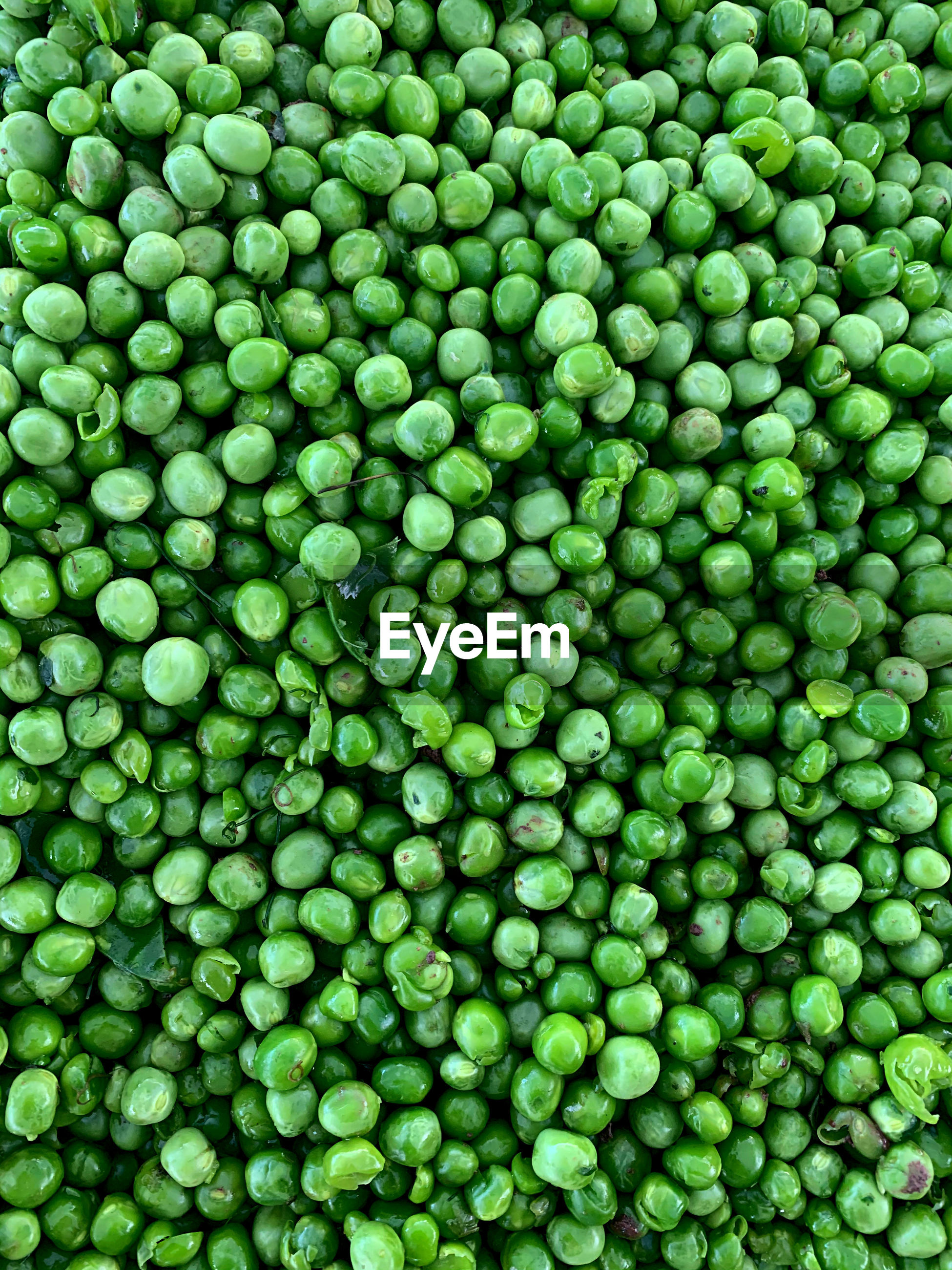 FULL FRAME SHOT OF GREEN EGGS IN CONTAINER