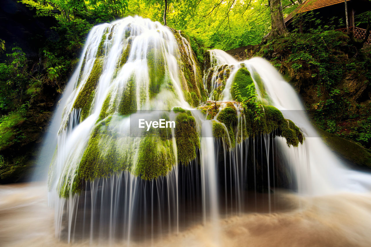 motion, blurred motion, long exposure, waterfall, water, speed, nature, no people, day, outdoors, beauty in nature, growth, tree, freshness, close-up