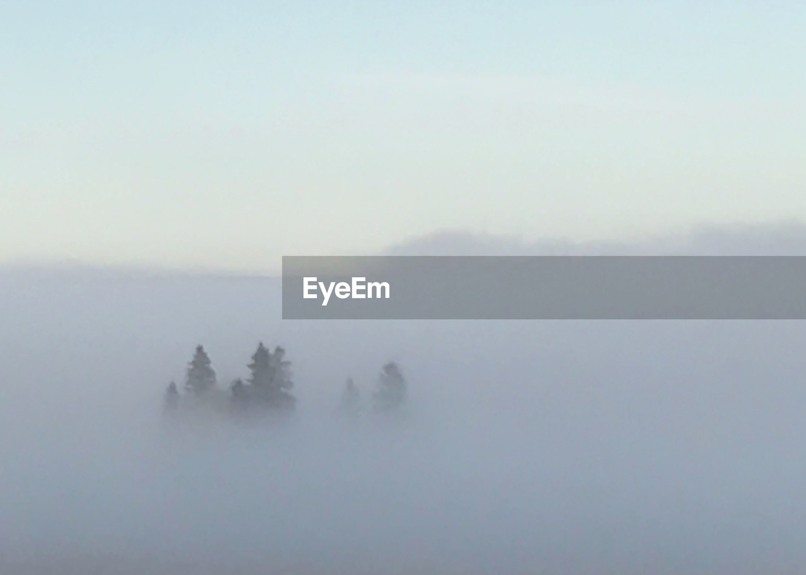 SCENIC VIEW OF LANDSCAPE IN FOGGY WEATHER AGAINST SKY DURING WINTER